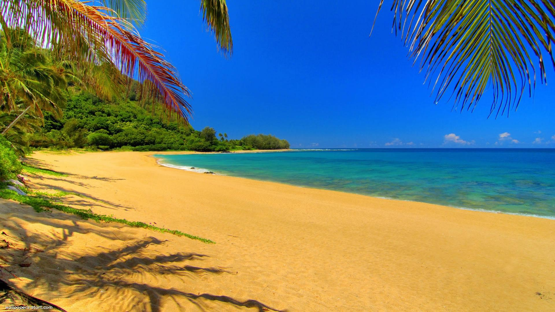 Beach summer backgrounds desktop free download.
