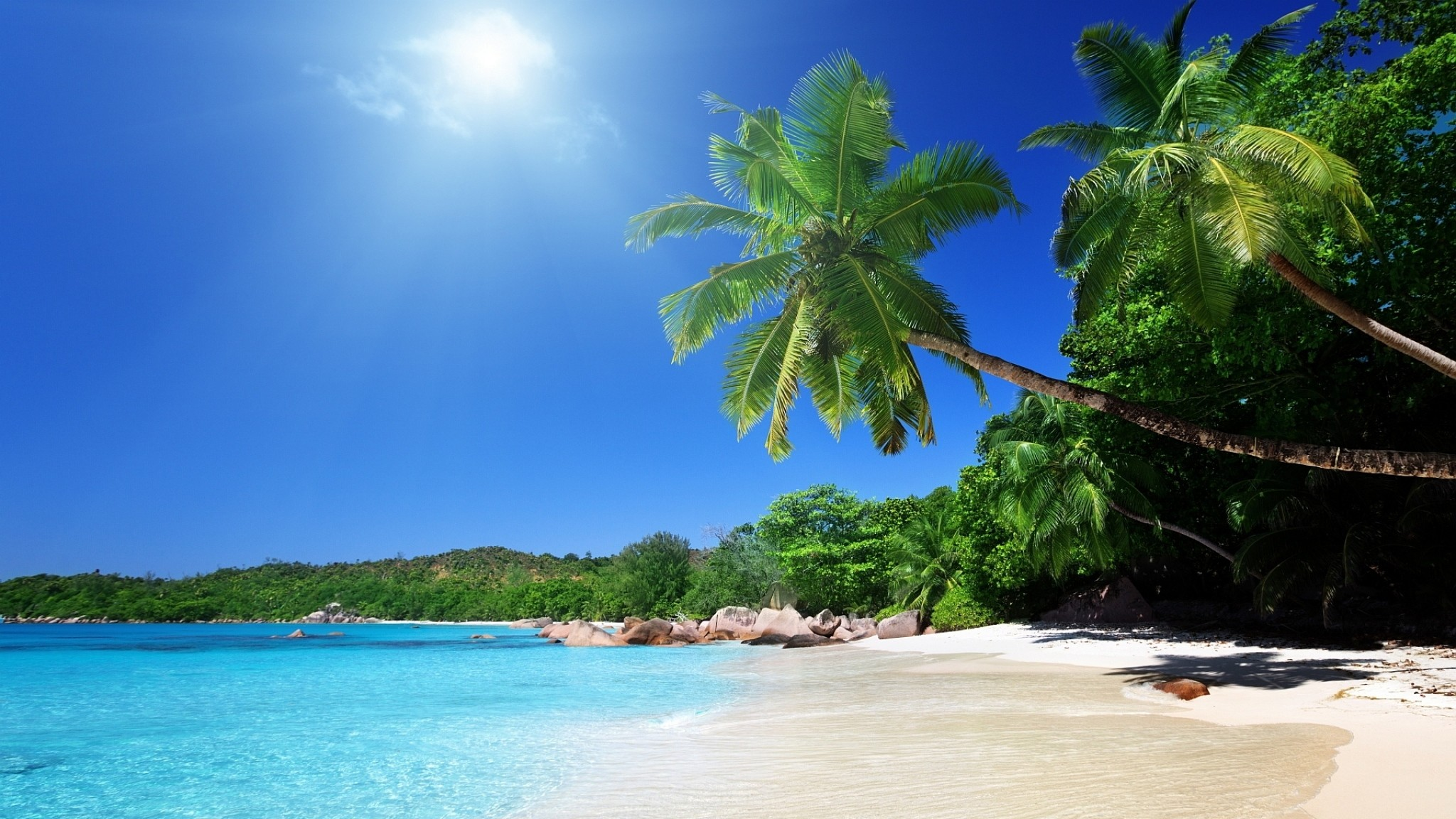 Preview wallpaper beach, sand, palm trees, tropical 2048×1152