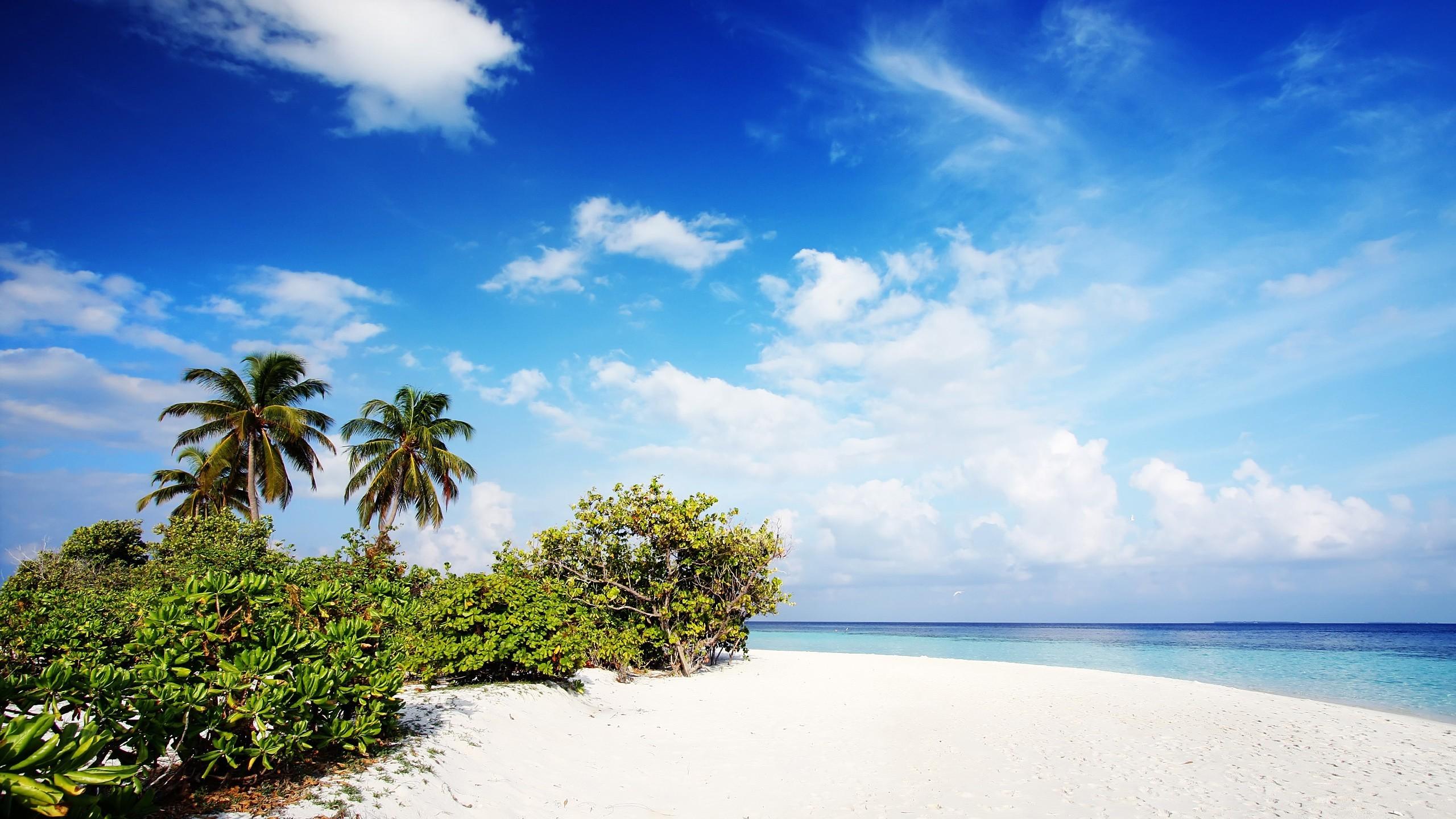 … x 1440 Original. Description: Download Nature Beach Beach wallpaper …