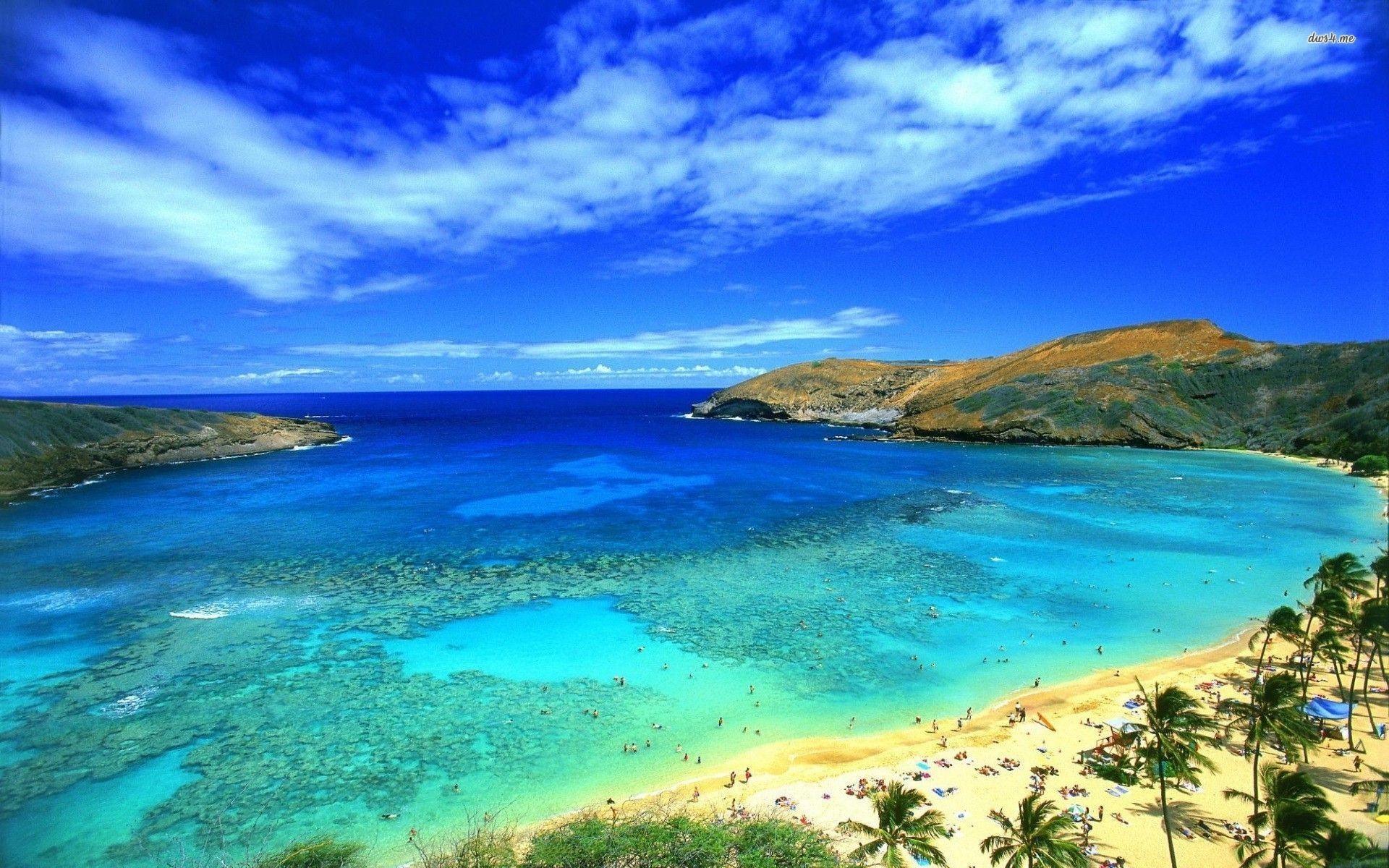 Blue Sky On Hawaii Beach Wallpaper HD #13113 Wallpaper   Wallpaper .