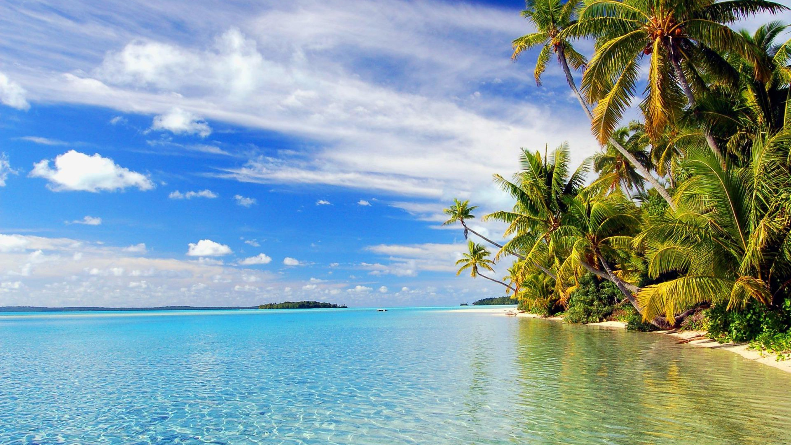Tropical Beach Wallpapers   Resolution: px, Millie Ely