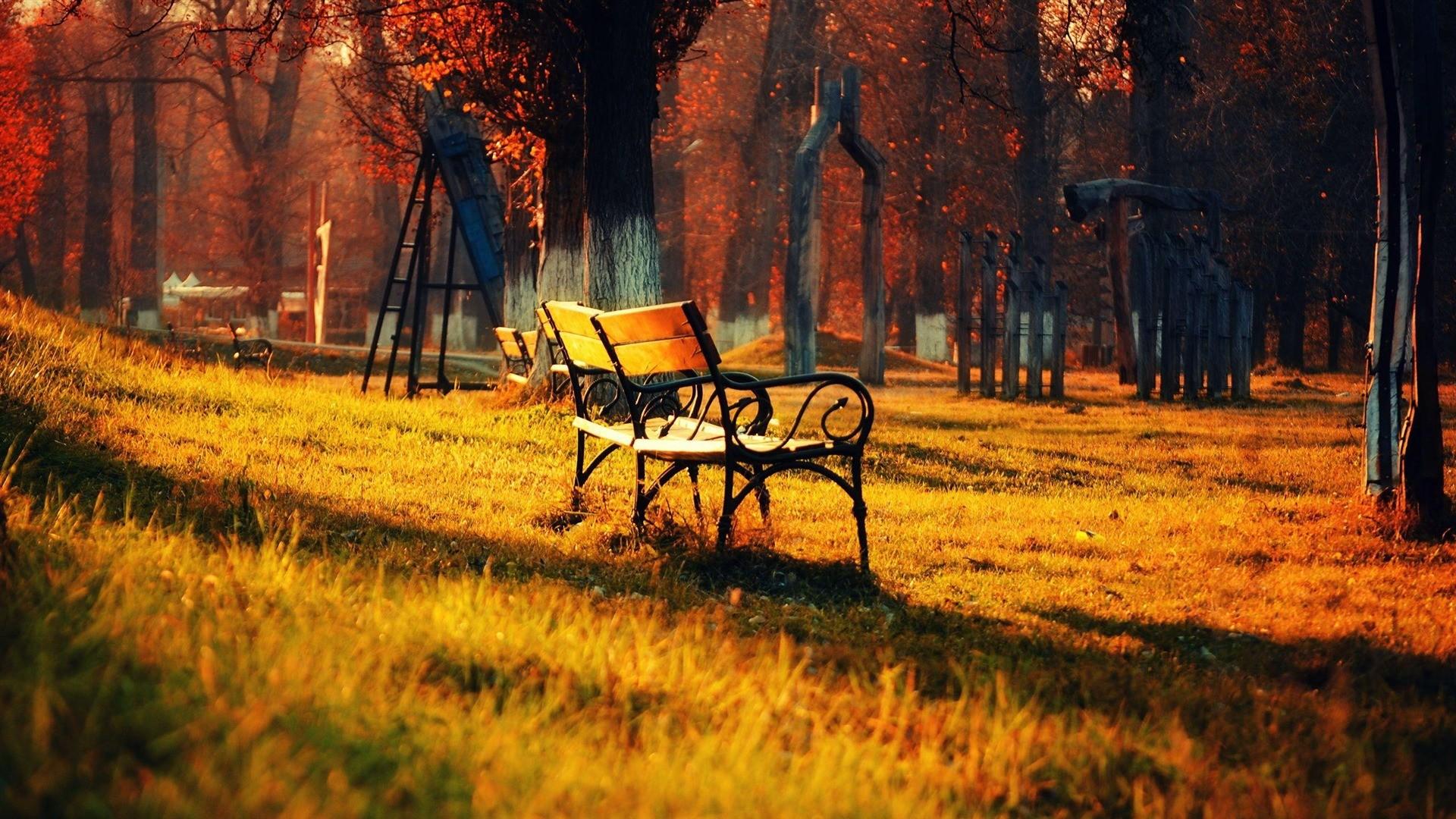 Bench Autumn landscape widescreen wallpaper, HD Wallpaper, Background .