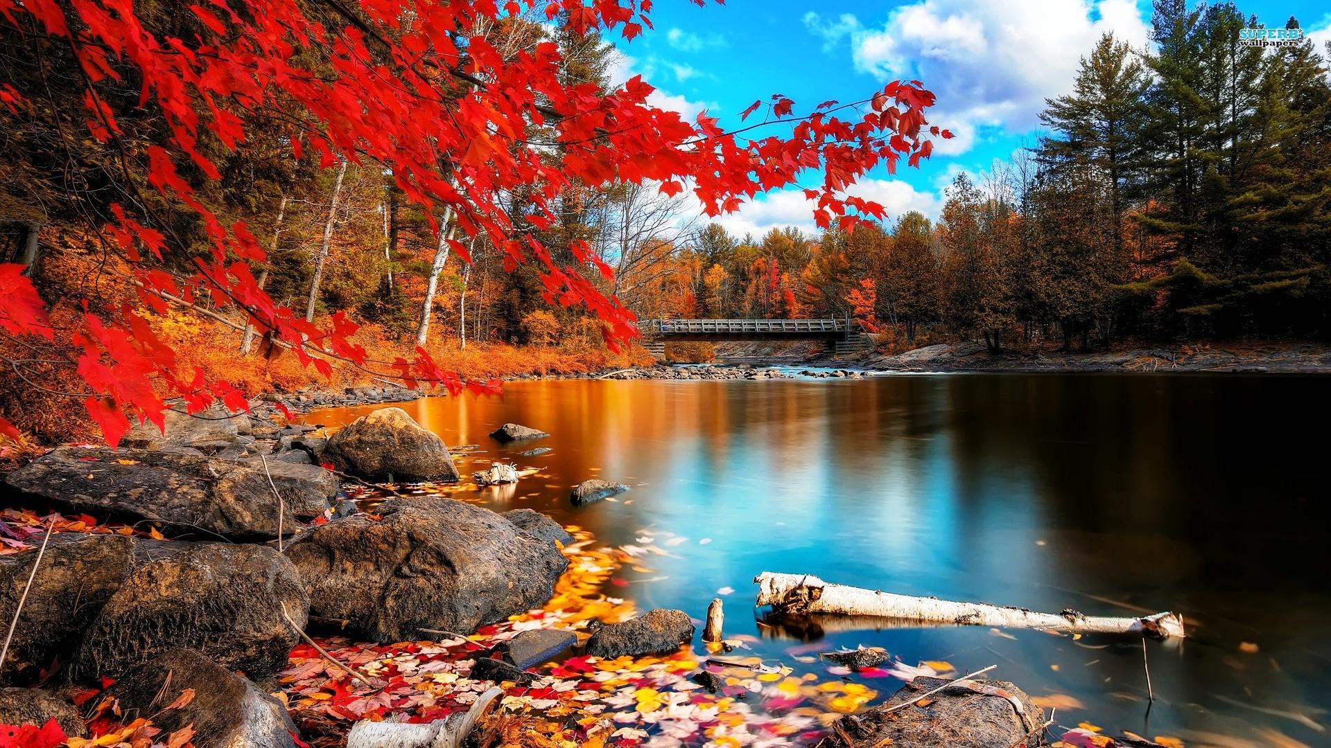 HD Lake Autumn Beauty