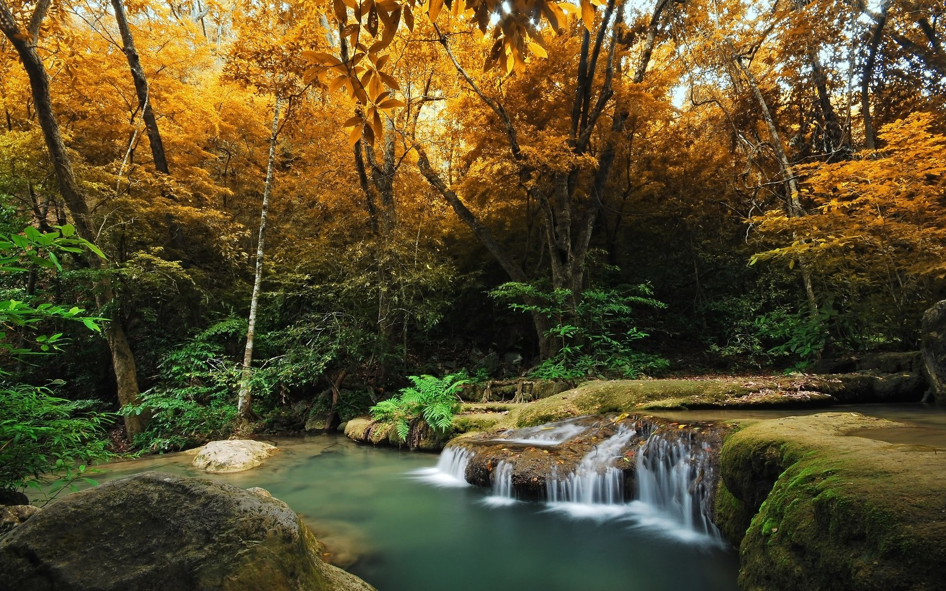 Autumn HD Widescreen Wallpaper