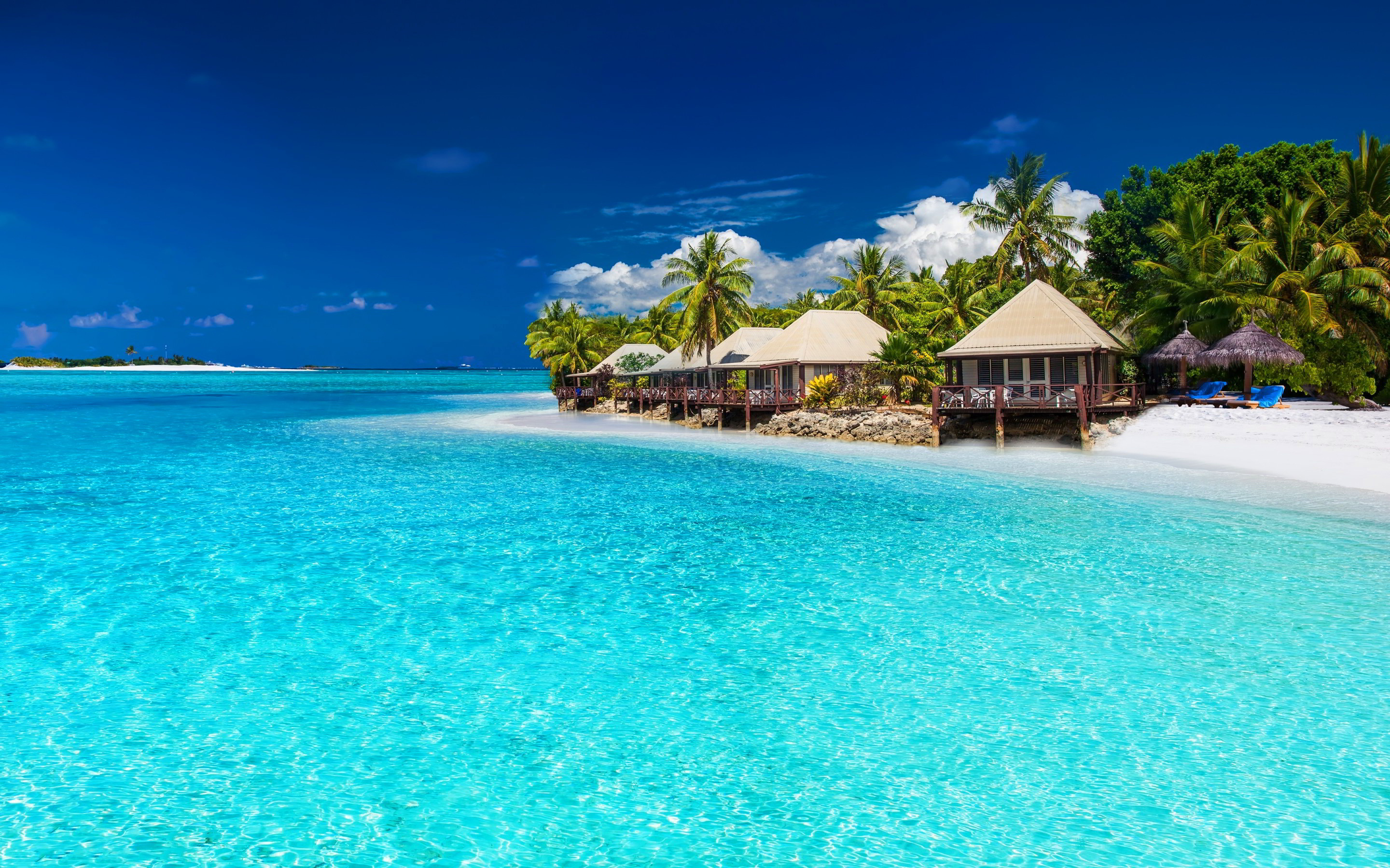 Tropical Beach Wallpapers THIS Wallpaper