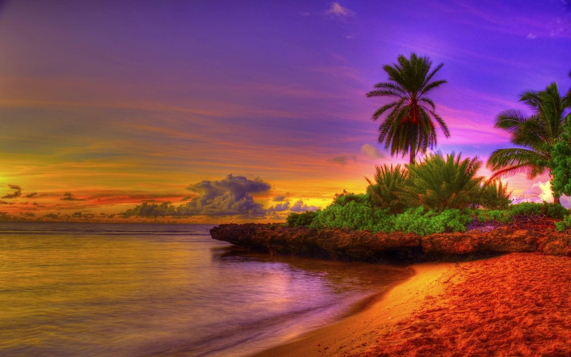 Tropical Beach HD Wallpaper –