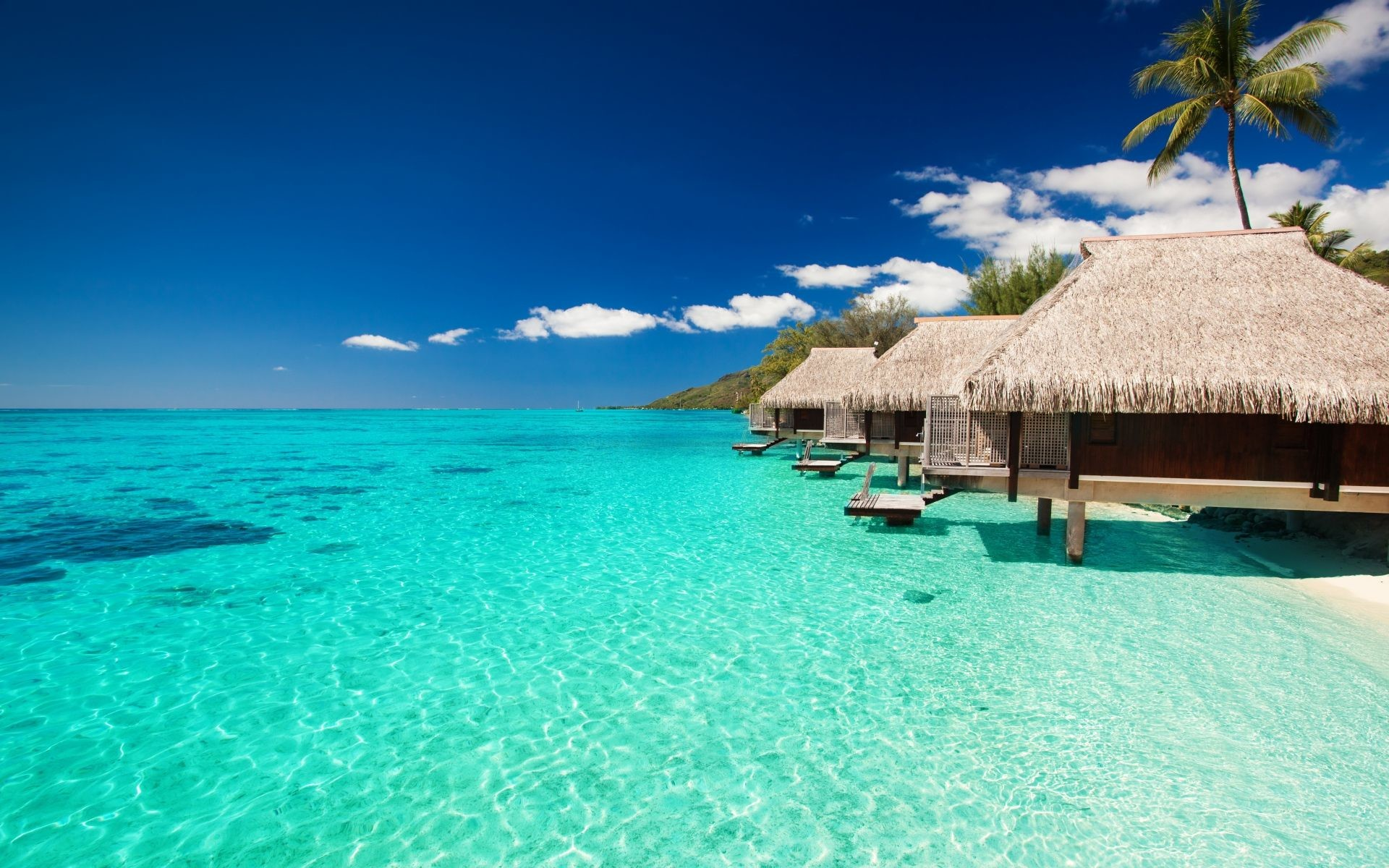Tropical Beach Bungalows HD Wallpaper