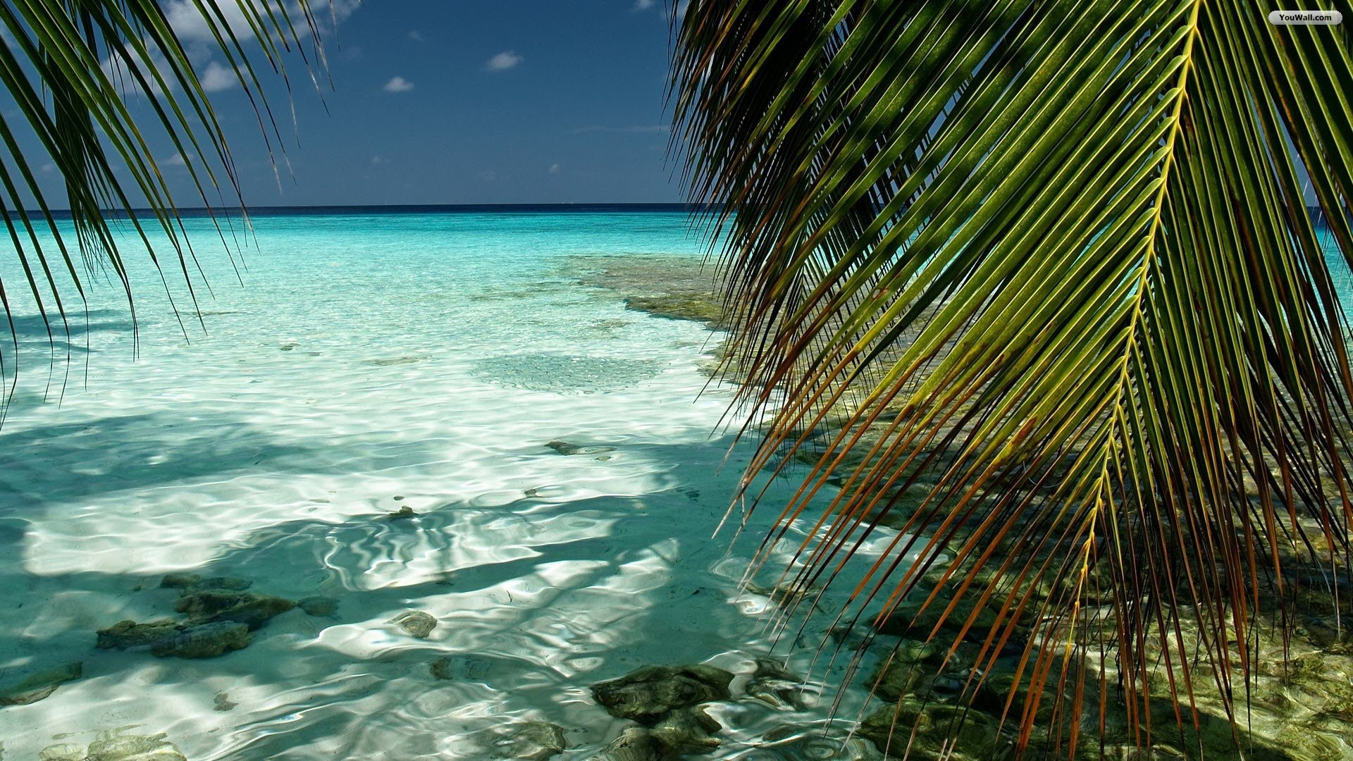 hd-wallpapers-wallpaper-beach-house-beautiful-wonderful-tropical-