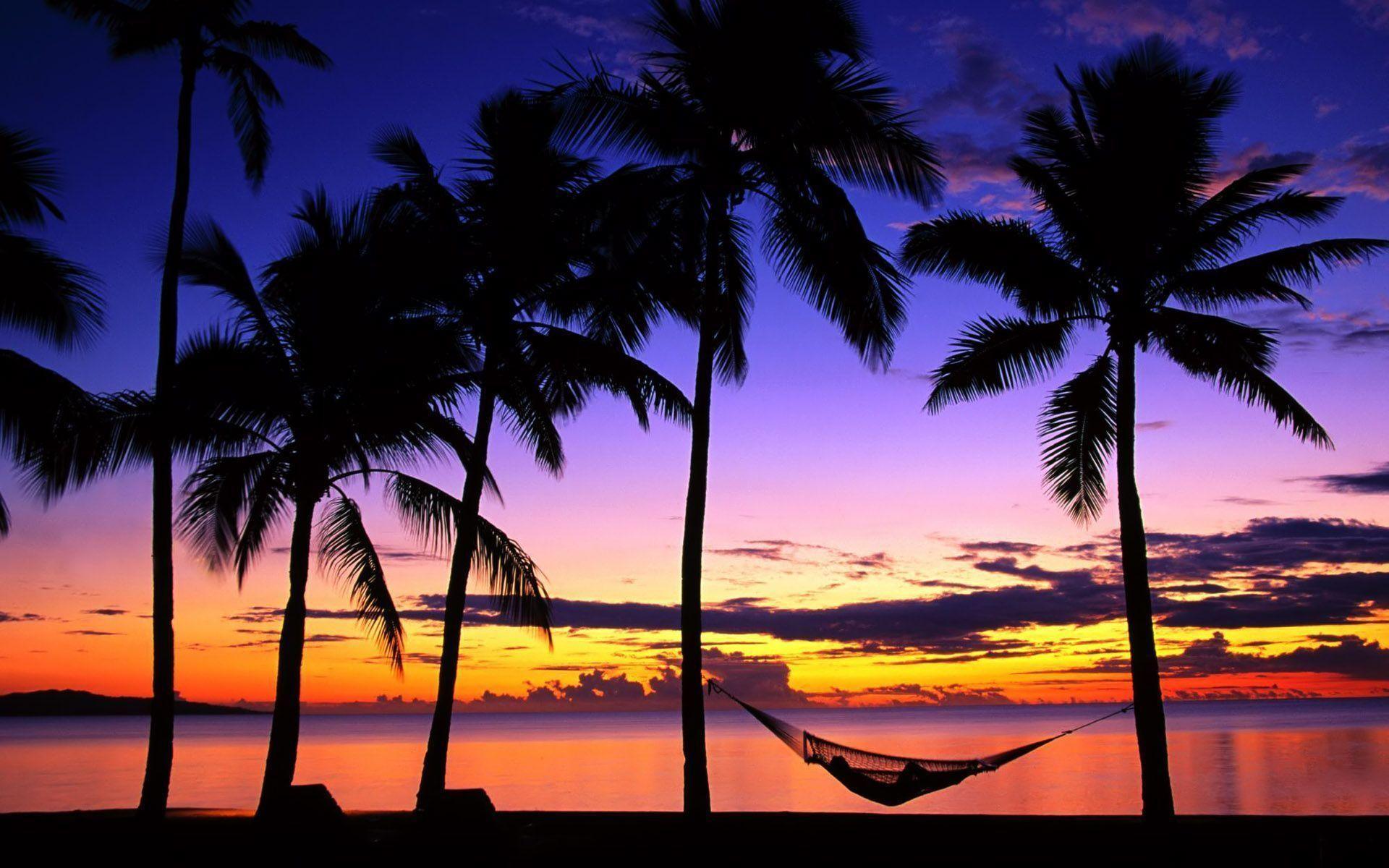 Tropical Beach Sunrise 8240 Hd Wallpapers in Beach n Tropical .