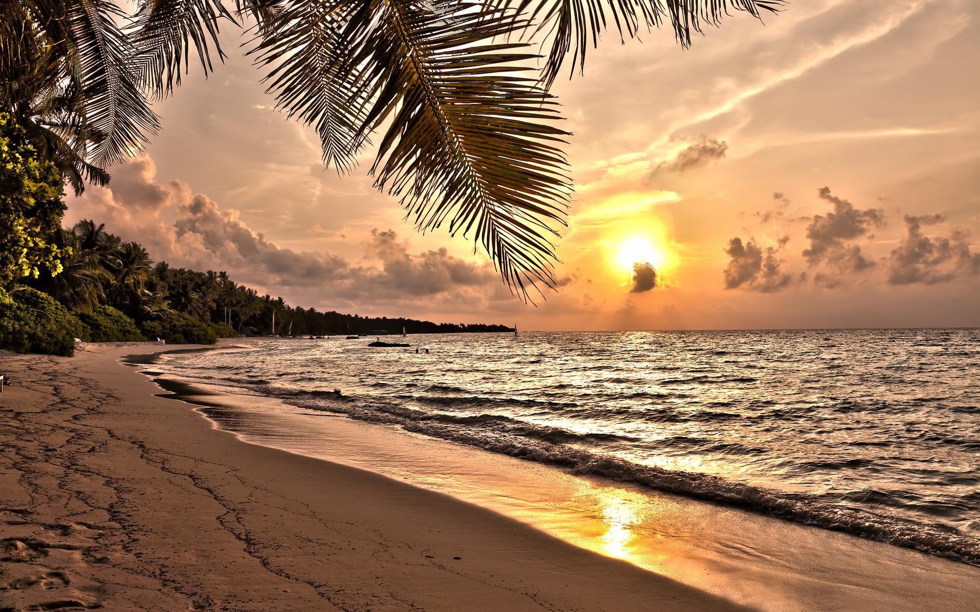 magnificent-sunset-over-tropical-beach-wallpaper-535f989c95808.jpg (