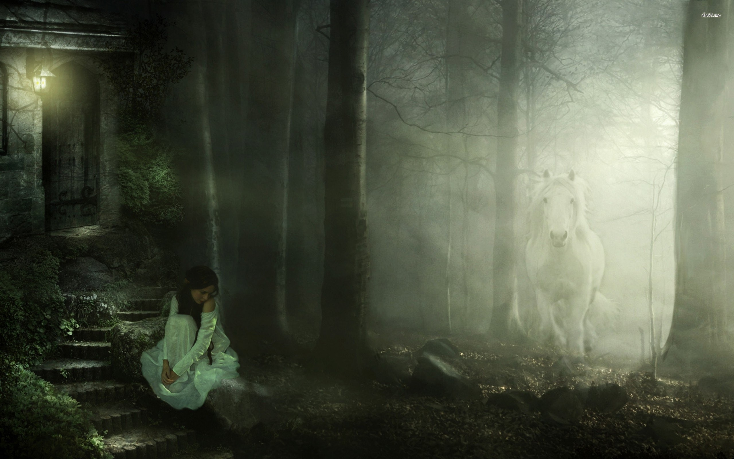 Girl In The Foggy Forest 703229 …