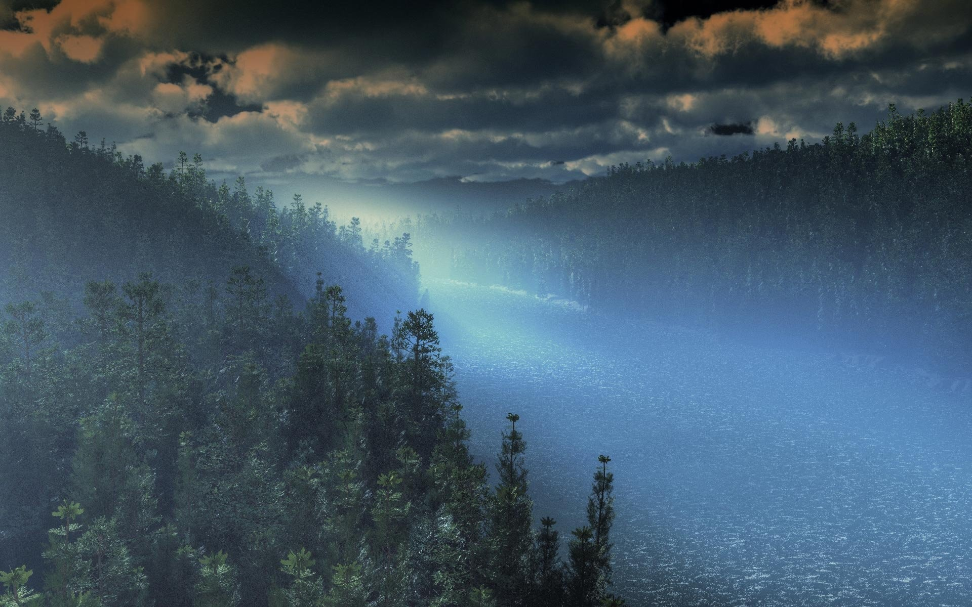Foggy Forest 265737