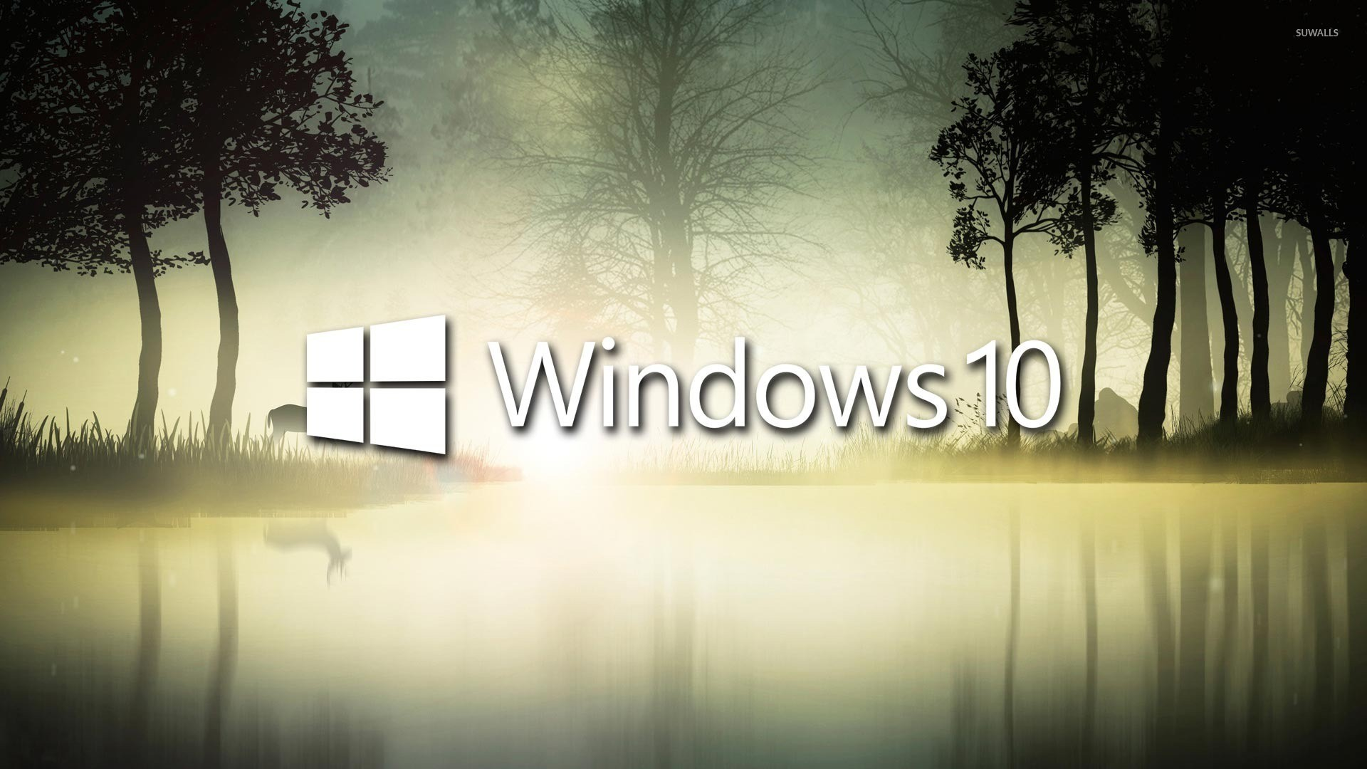 Windows 10 in the foggy forest wallpaper