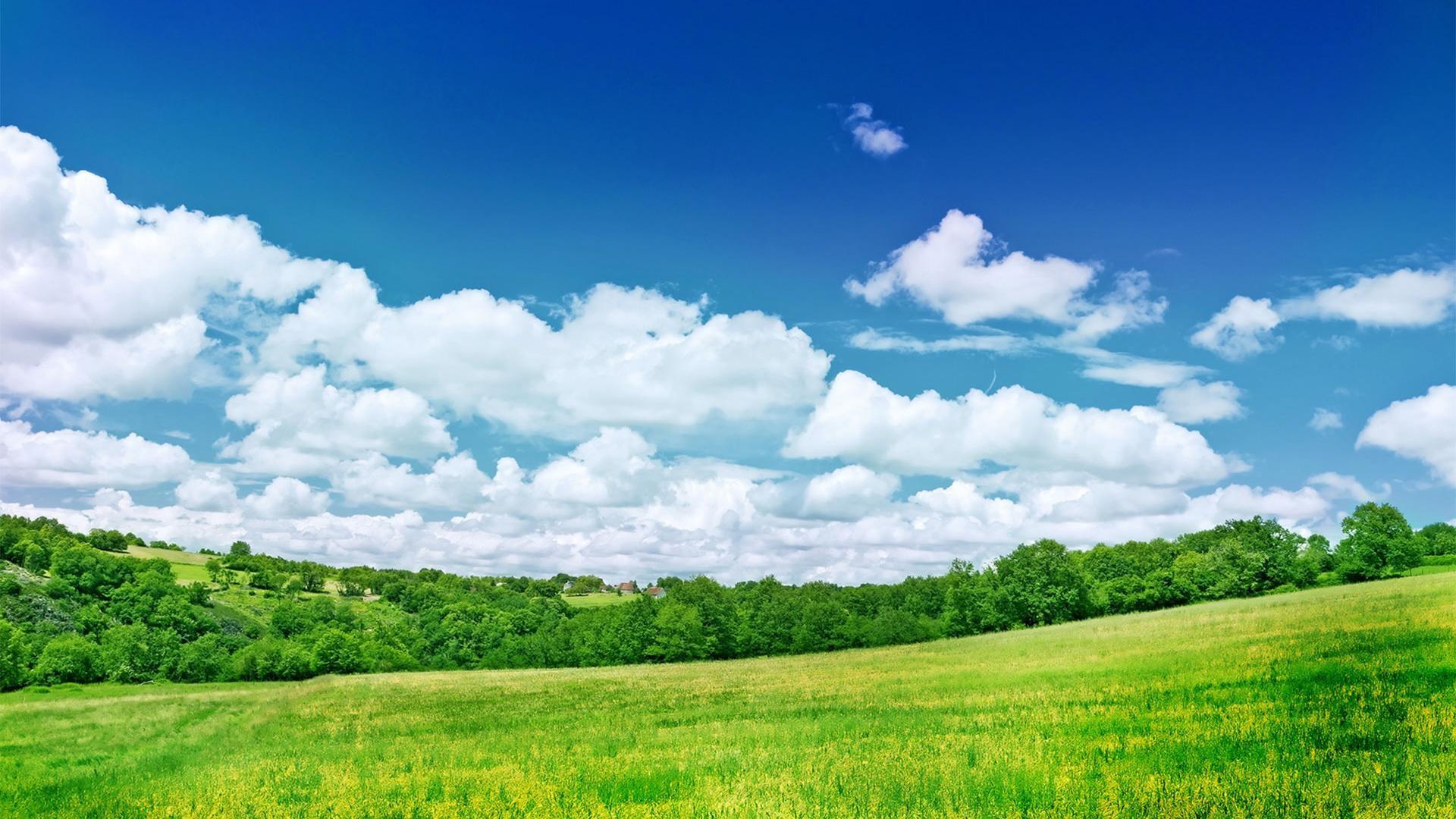 hd fresh summer grassland scenery backgrounds wide  wallpapers:1280×800,1440×900,1680×1050 –