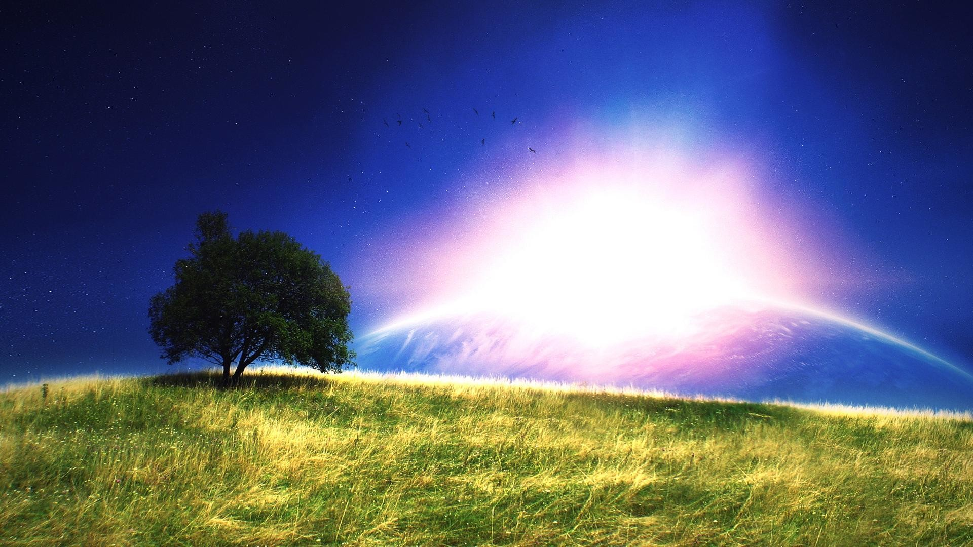 fantasy grass and trees scenery background wide  wallpapers:1280×800,1440×900,1680×1050 –