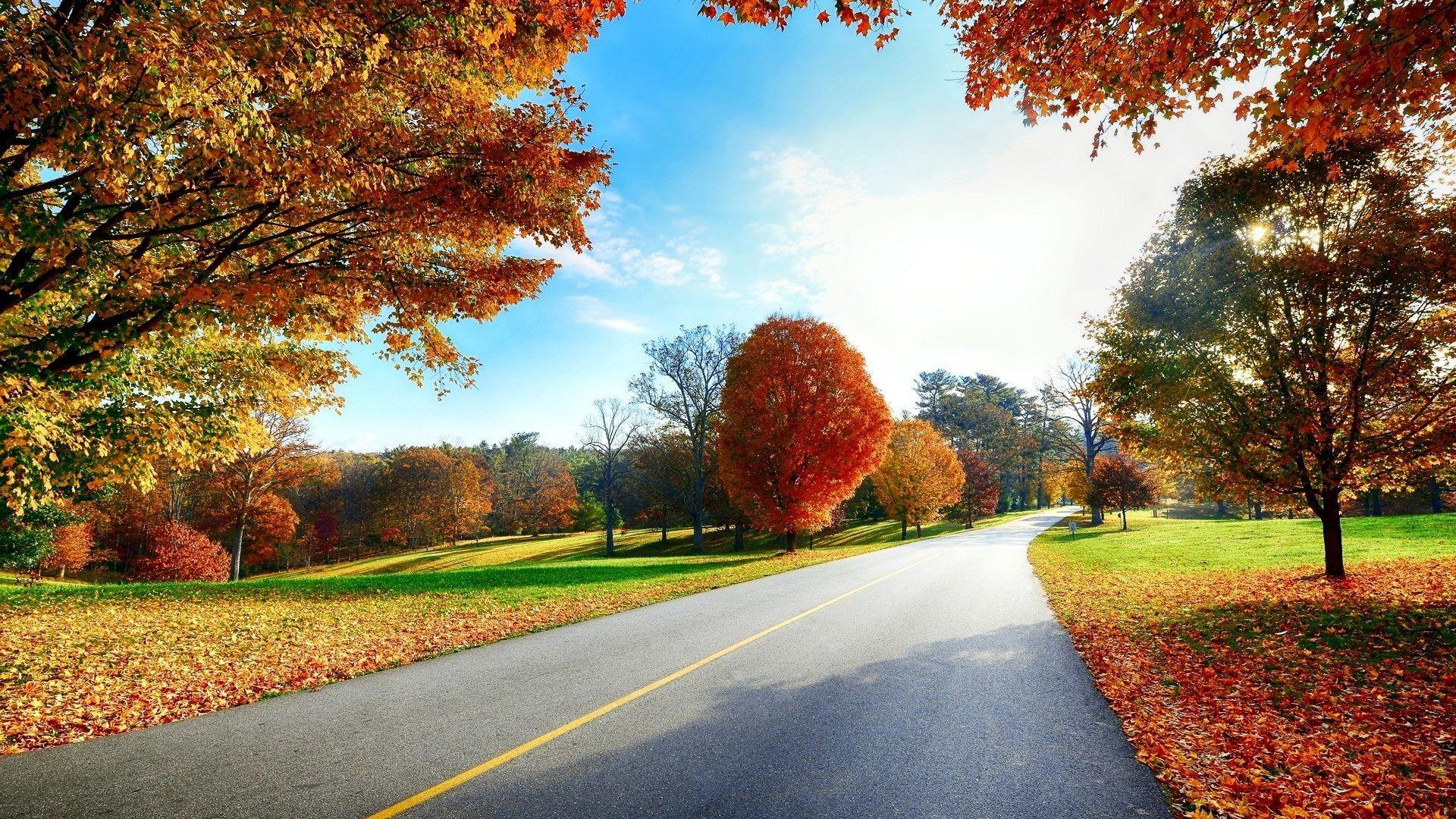 Beautiful autumn road scenery wallpapers – Free full hd wallpapers .