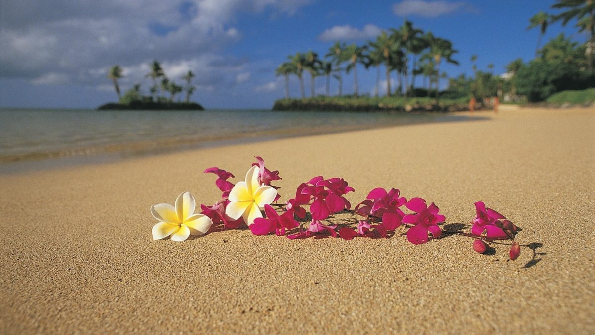 Photos-Nature-Hawaii-Wallpapers-HD
