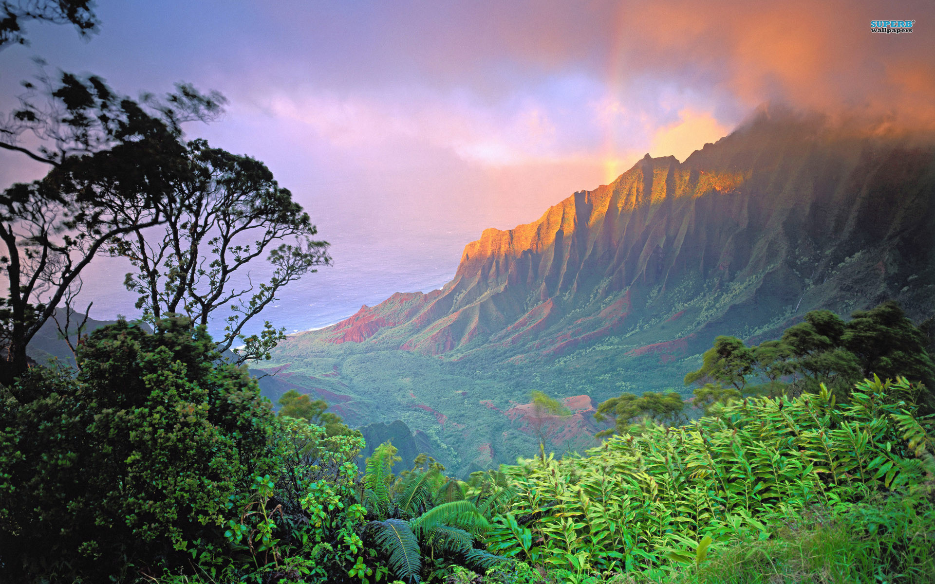 HD Images Collection of Hawaii: 3507276 by Celina Feemster