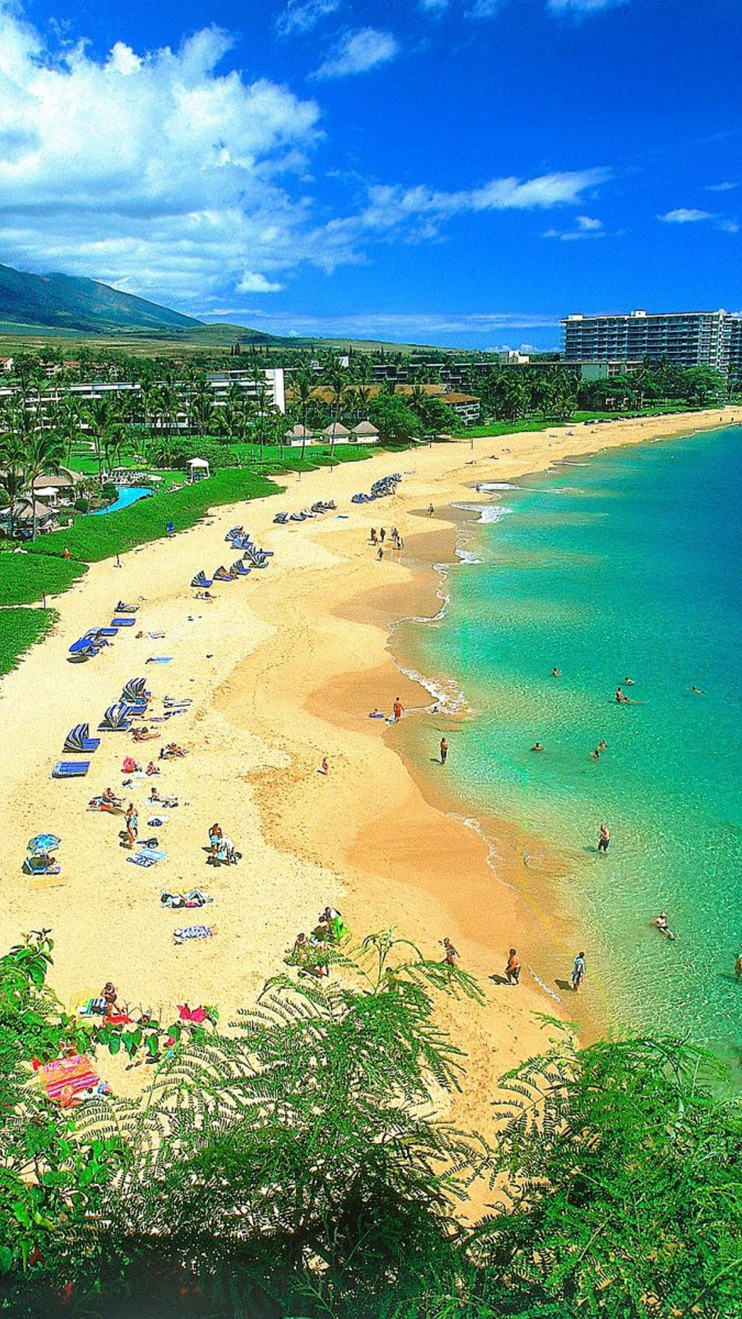 Backgrounds Kaanapali Beach Maui Hawaii For Iphone Plus Full Hd Pics  Wallpaper Mobile