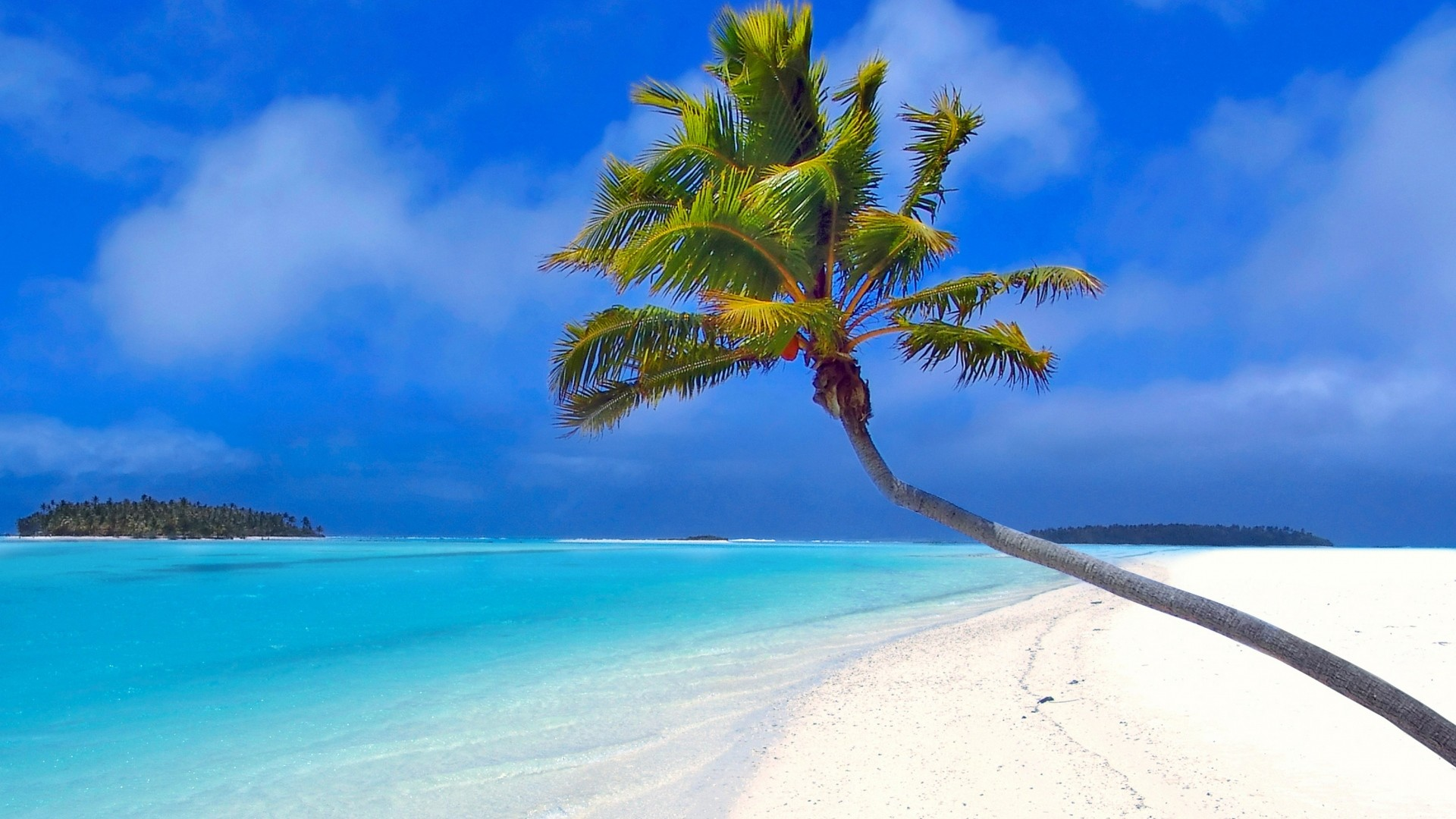Preview wallpaper maldives, beach, palm trees, sand, sea 1920×1080