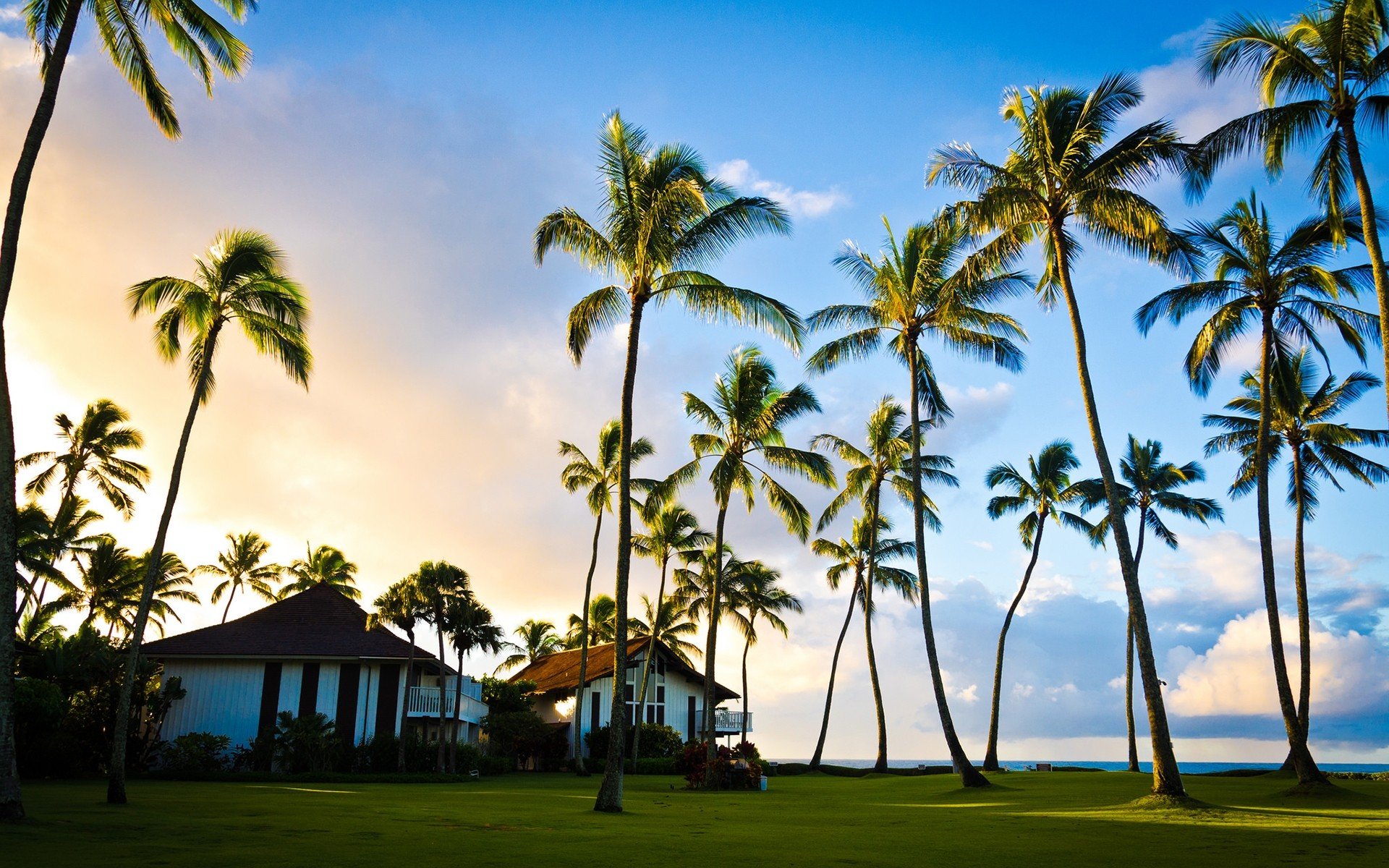 Hawaii Beach Houses 4K Full Hd Backgrounds Wallpaper | HD Wallpapers