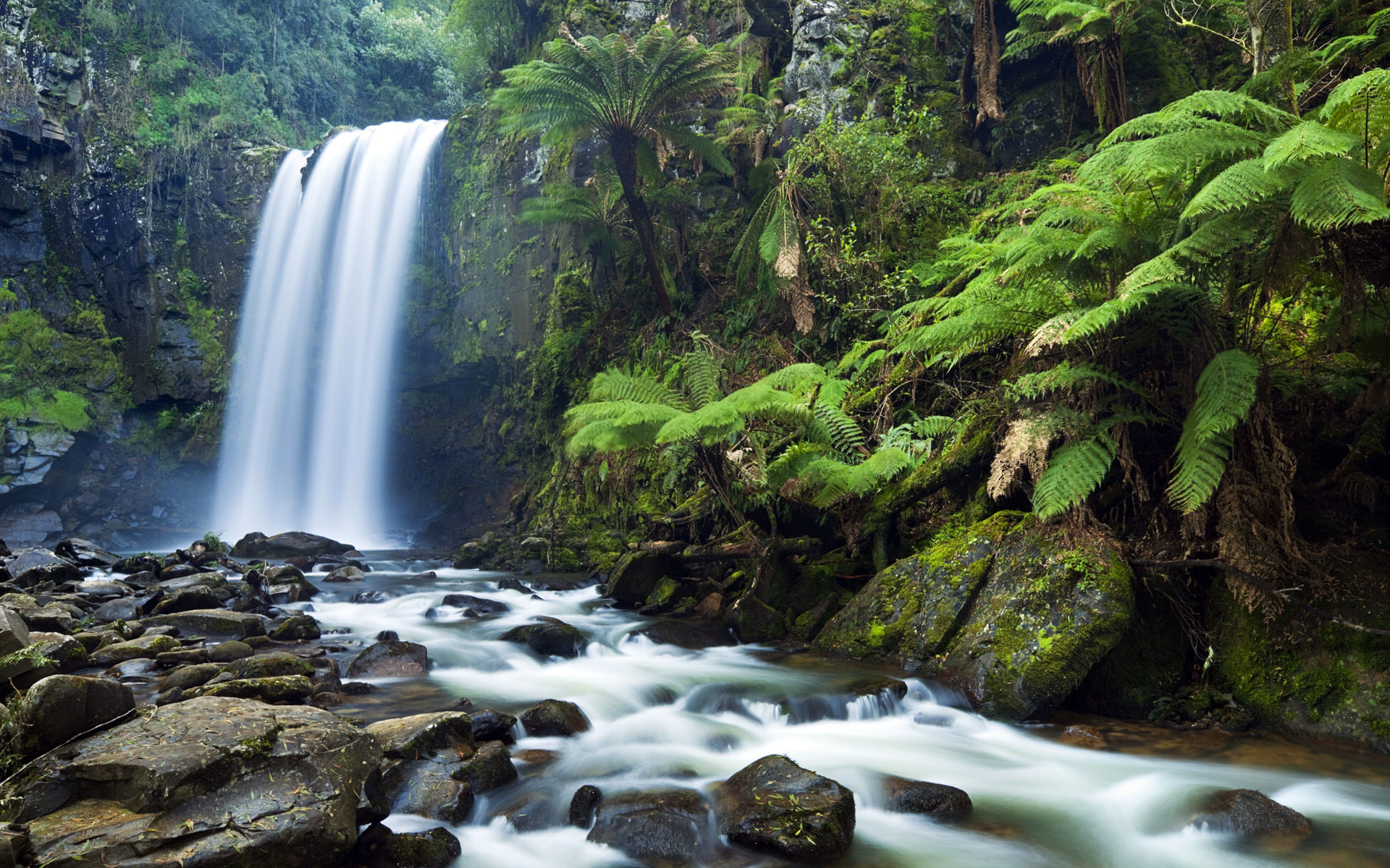 """Search Results for """"free animated waterfall wallpaper for windows –  Adorable Wallpapers"""