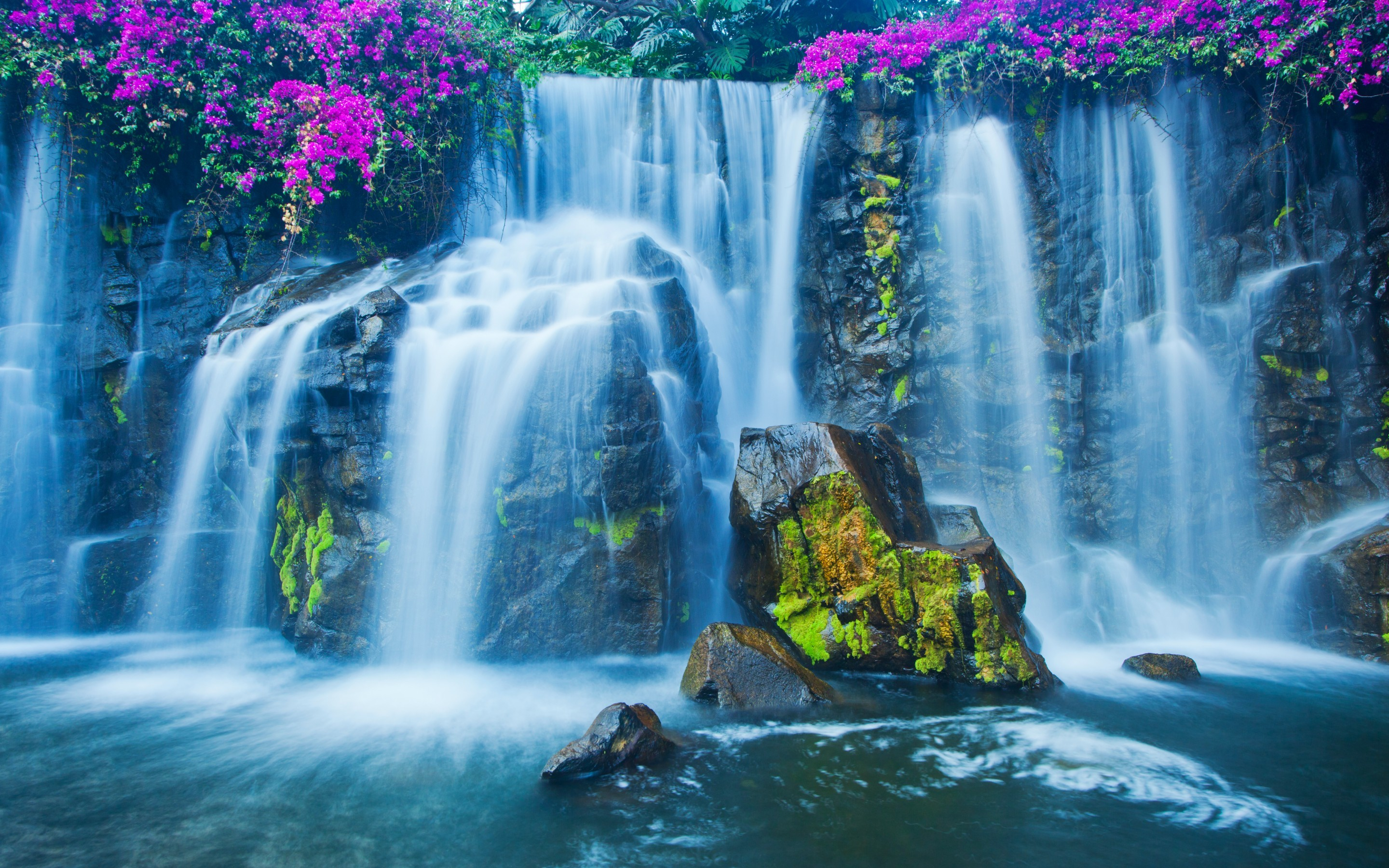 Animated Waterfalls: Still Preferable Wallpapers For Windows XP : Waterfall  Wallpaper with Purple Flowers