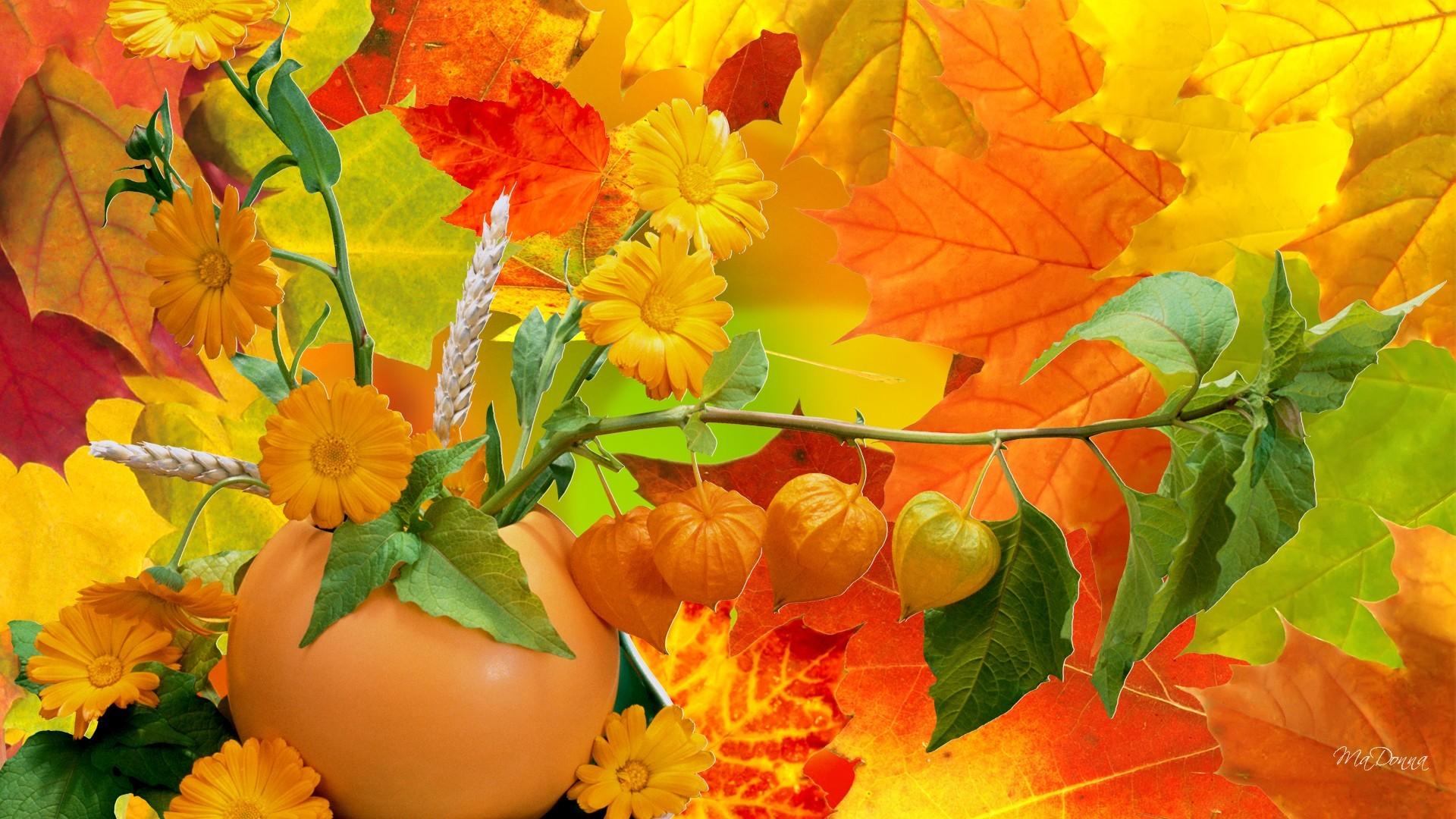 Октябрь картинки все по праздникам