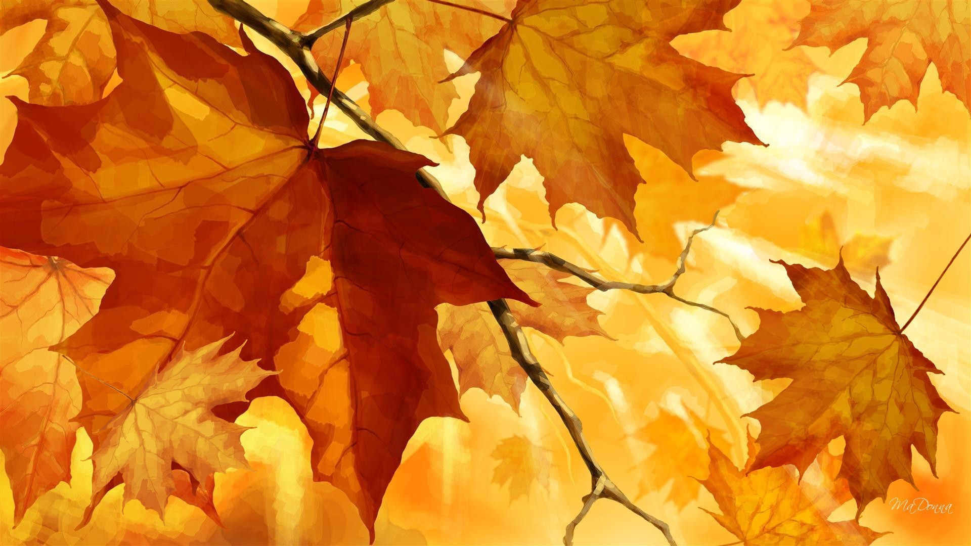 Season Tag – Light Autumn Firefox Orange Leaves Season Fall Change Persona  Color Nature Waterfall Wallpaper