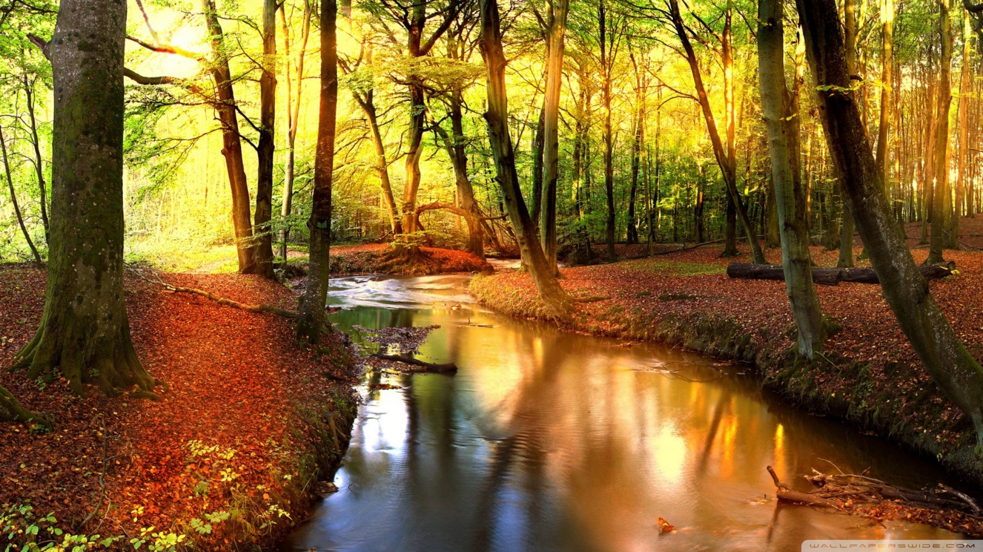 … Garden Design with Impressive Autumn Landscape HD desktop wallpaper :  High Definition with Small Backyard Design