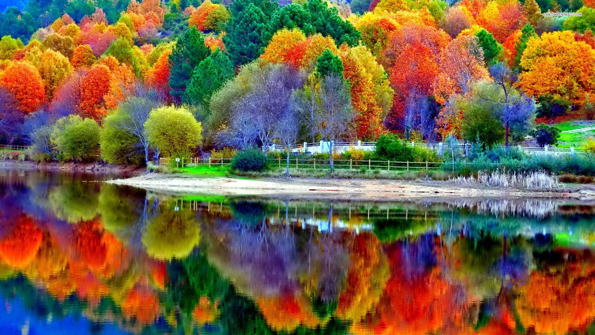 Beautiful Autumn Colors Reflected in Lake HD Desktop Wallpaper