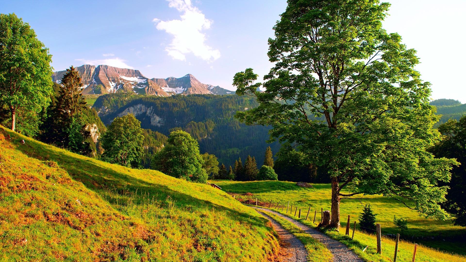 Preview wallpaper switzerland, mountains, alps, road, summer 1920×1080