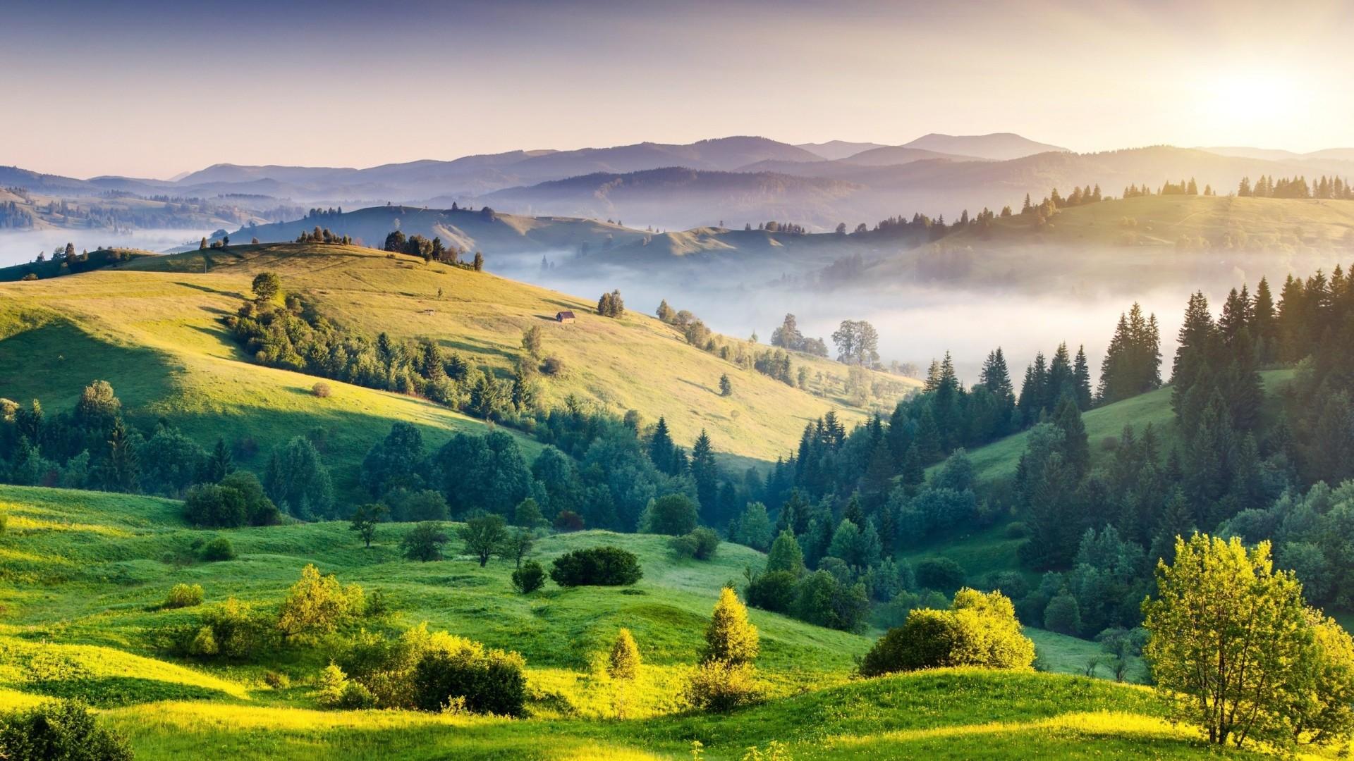 Wallpaper mountains, grass, trees, day, summer