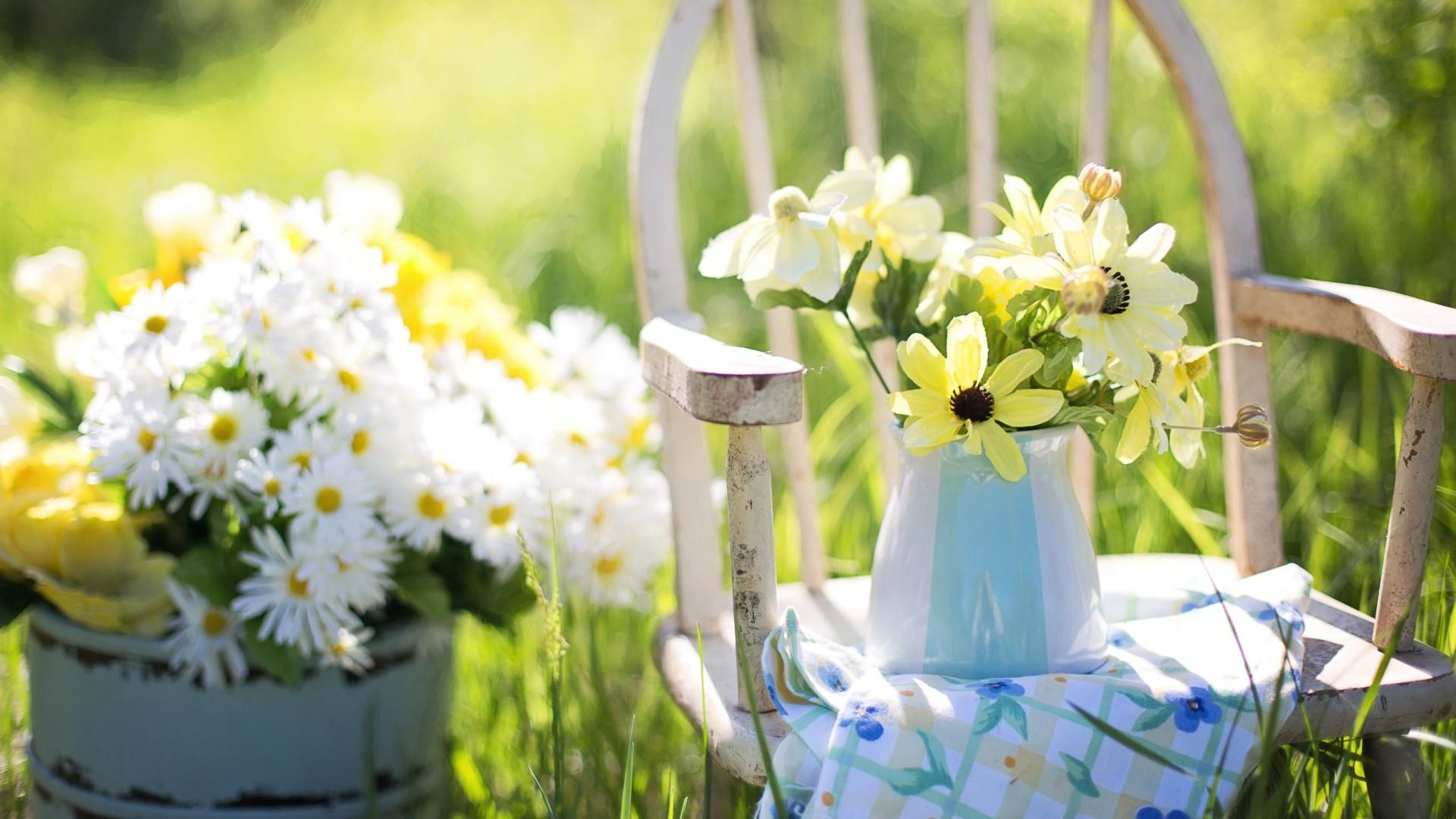 Wallpaper flowers, vase, summer