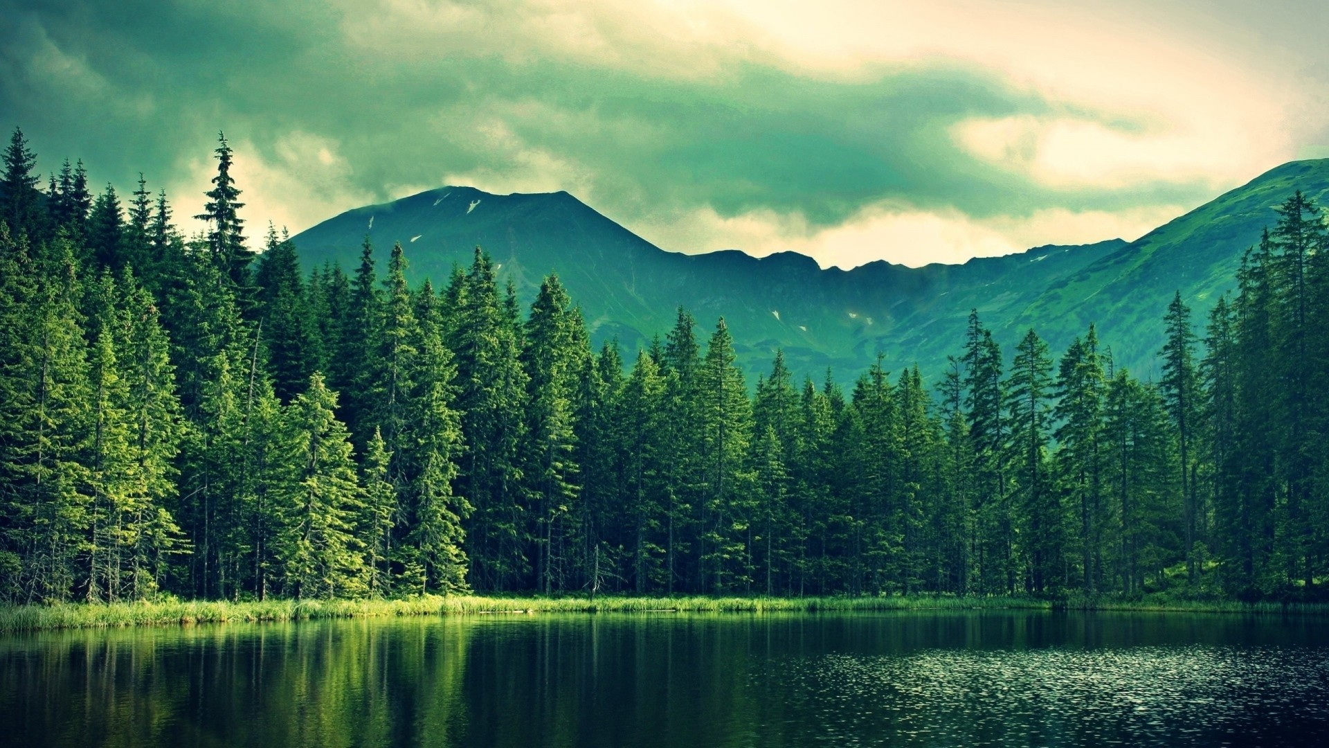 Wallpaper mountains, summer, lake, trees, forest
