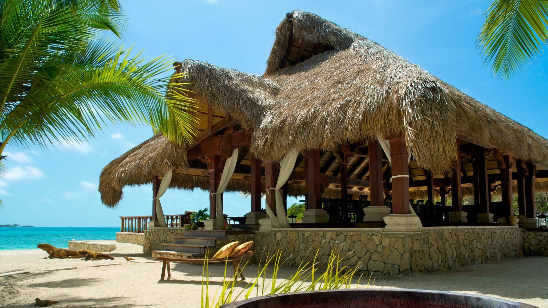 Wallpaper maldives, tropical, beach, palm trees, summer