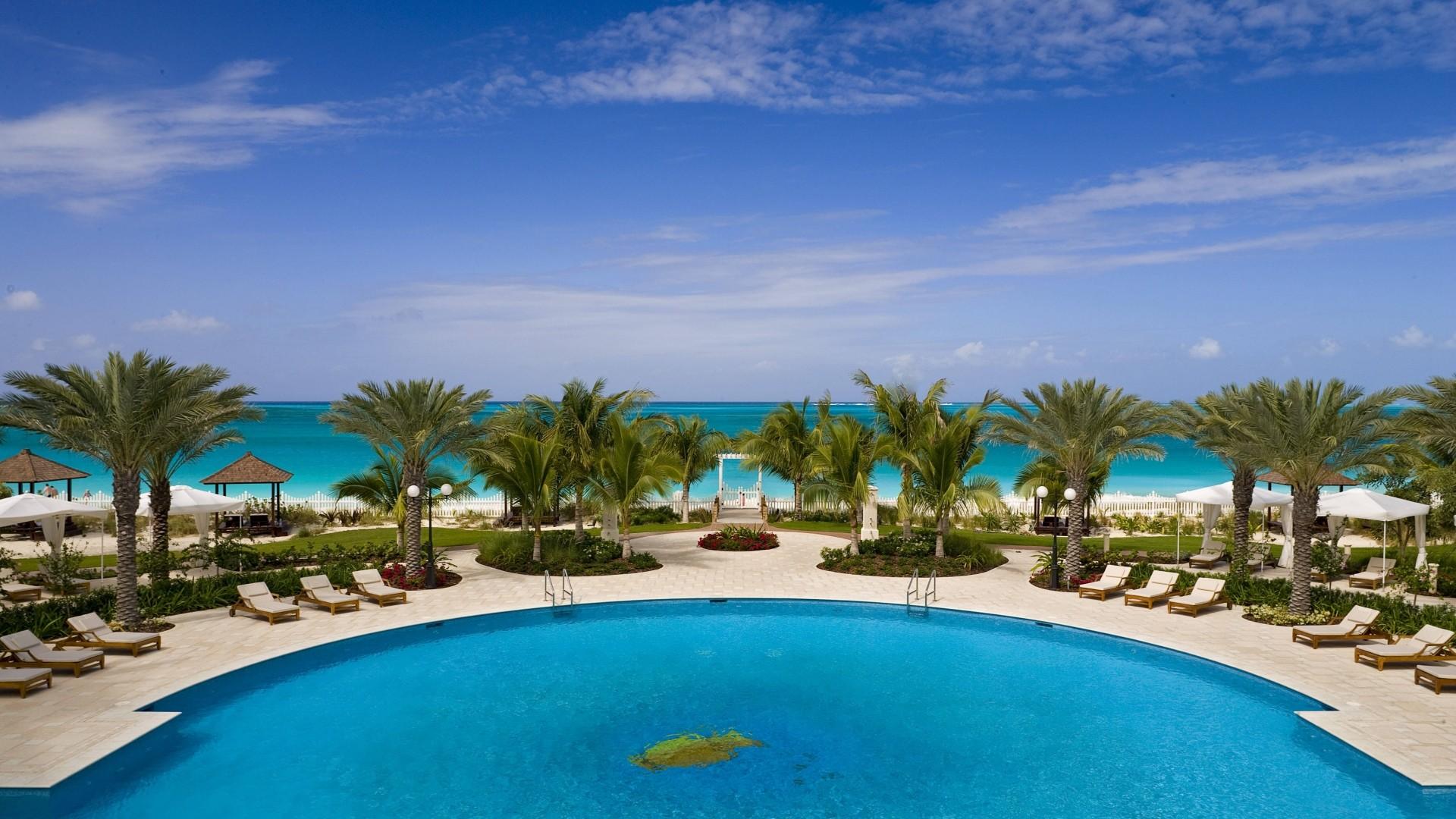 Wallpaper tropical, resort, palm trees, summer