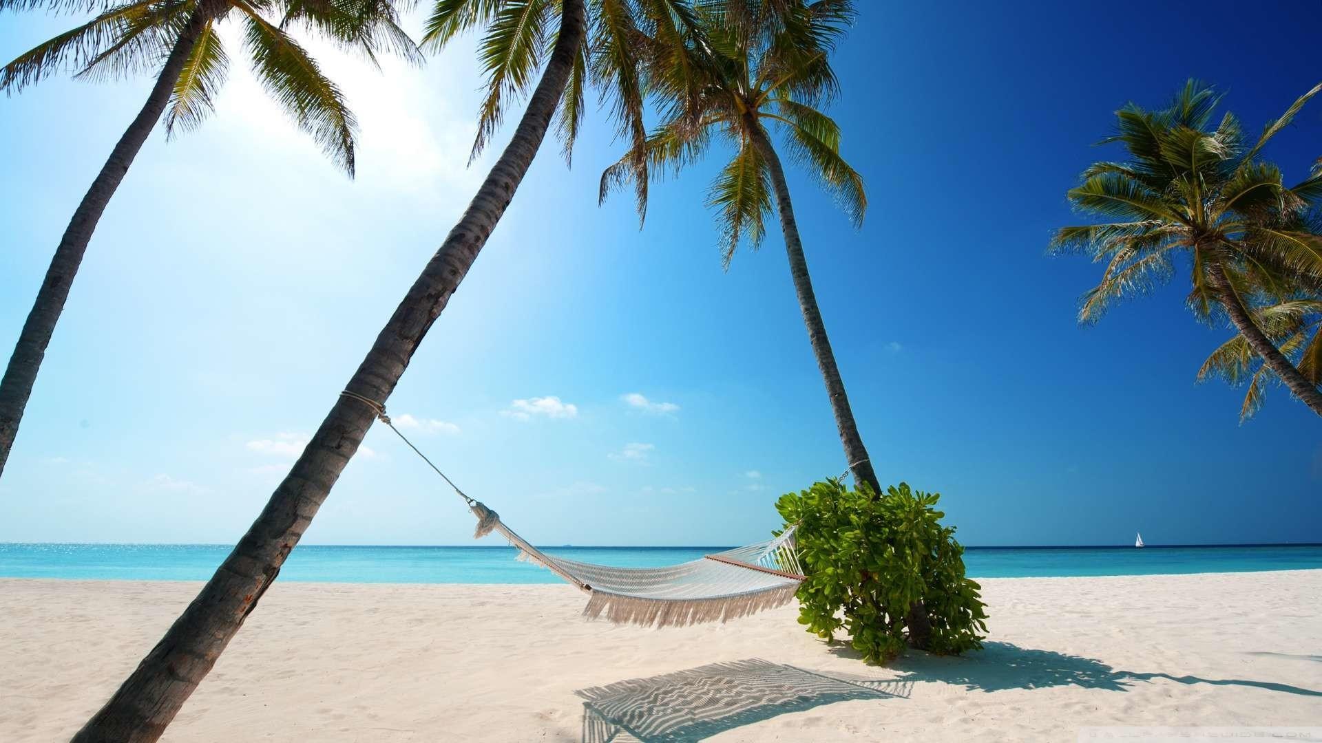 Wallpaper: Hammock On Tropical Beach Wallpaper 1080p HD. Upload at .