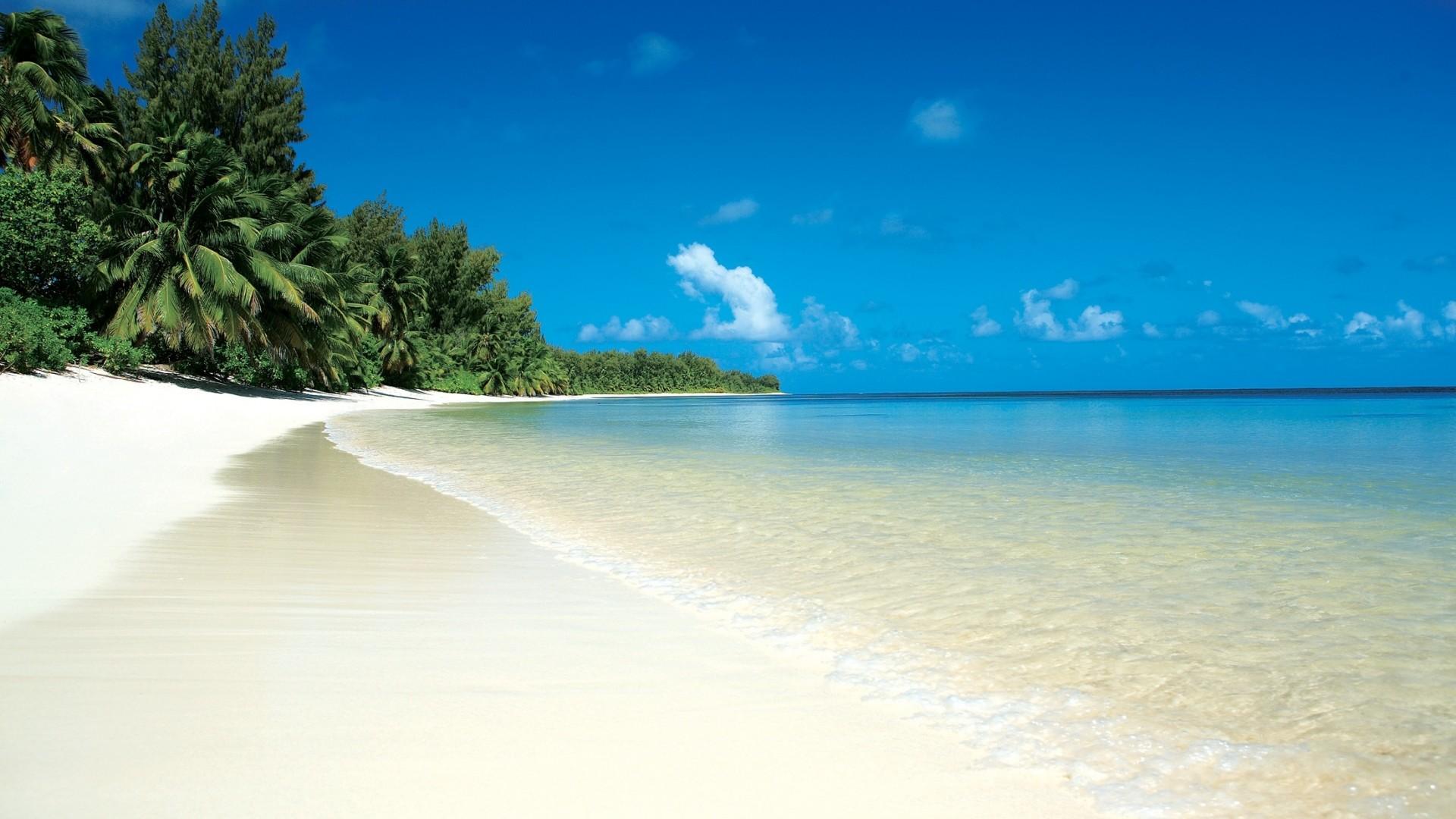 Preview wallpaper beach, tropics, sand, white, palm trees, relax 1920×1080