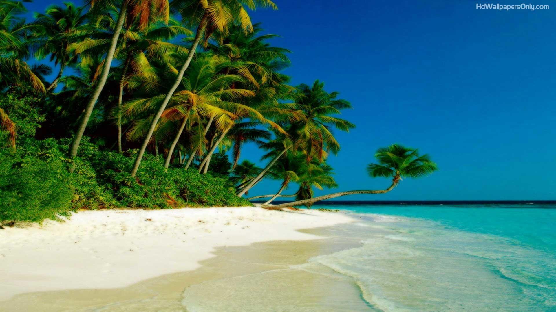 Beach Hd Wallpaper 1080p – High Quality Images .