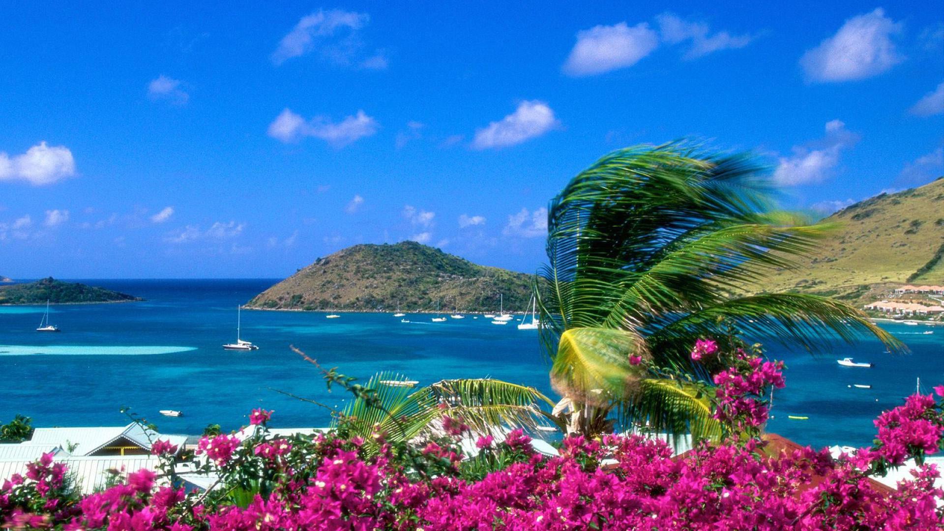 hd pics photos beautiful beach attractive hd quality desktop background  wallpaper