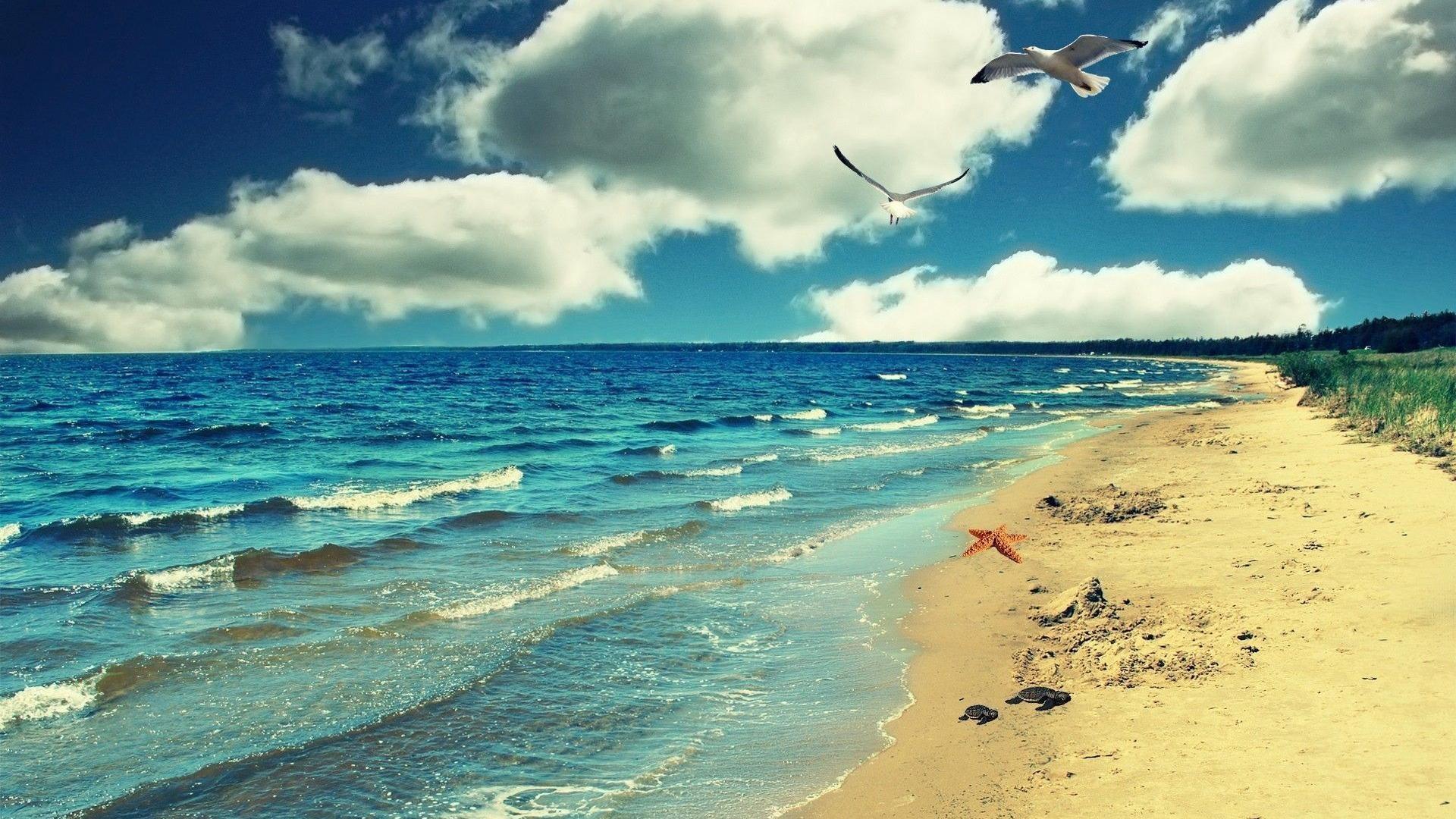 Sea nature side wallpaper 1080P.