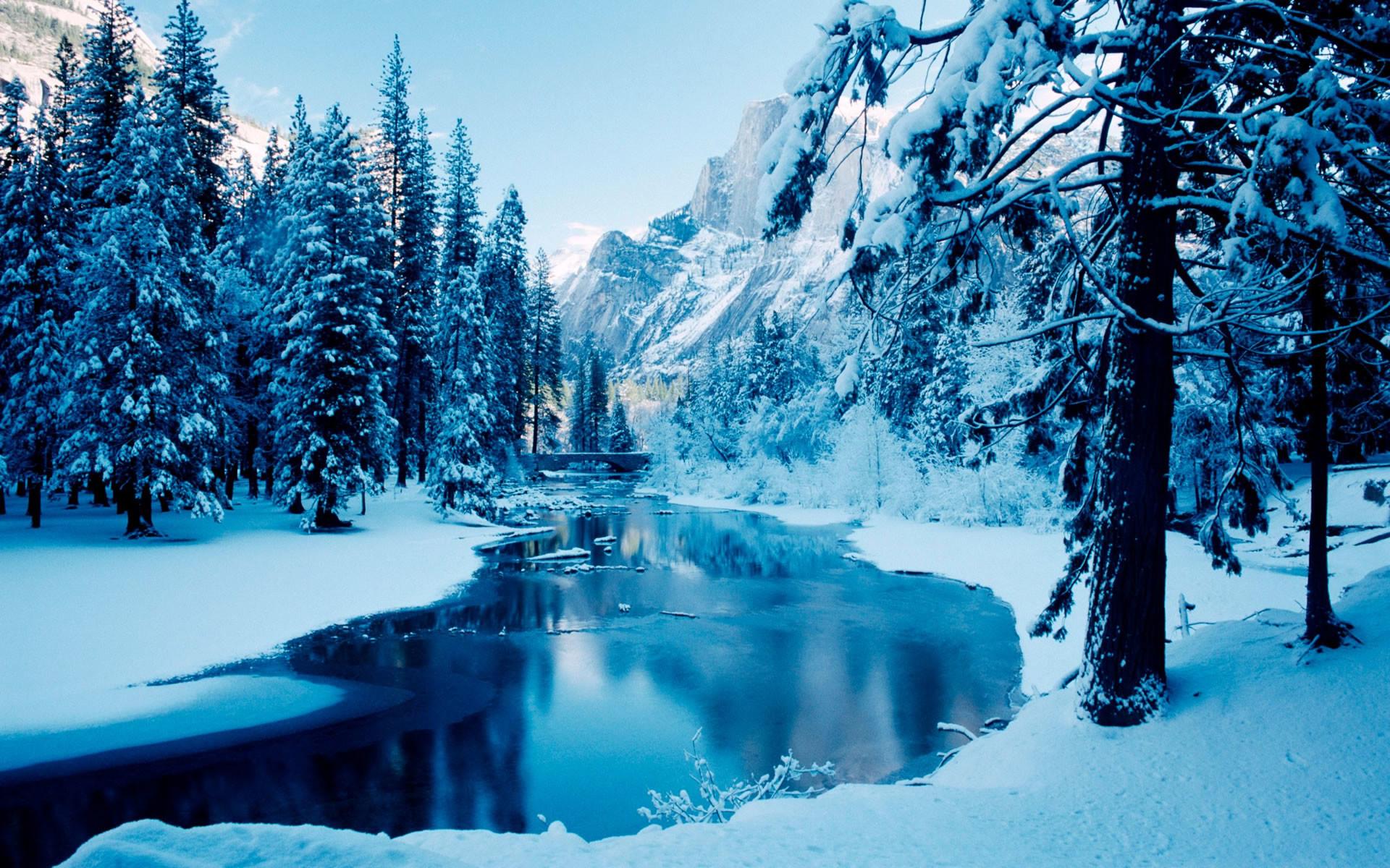 blue winter-the cold winter landscape Desktop Wallpapers View