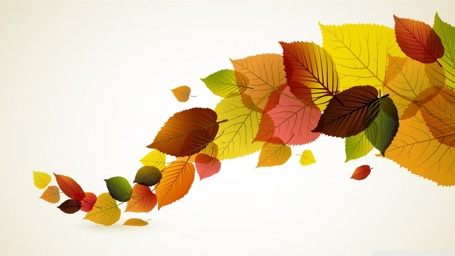 Fall Backgrounds Autumn Leaves