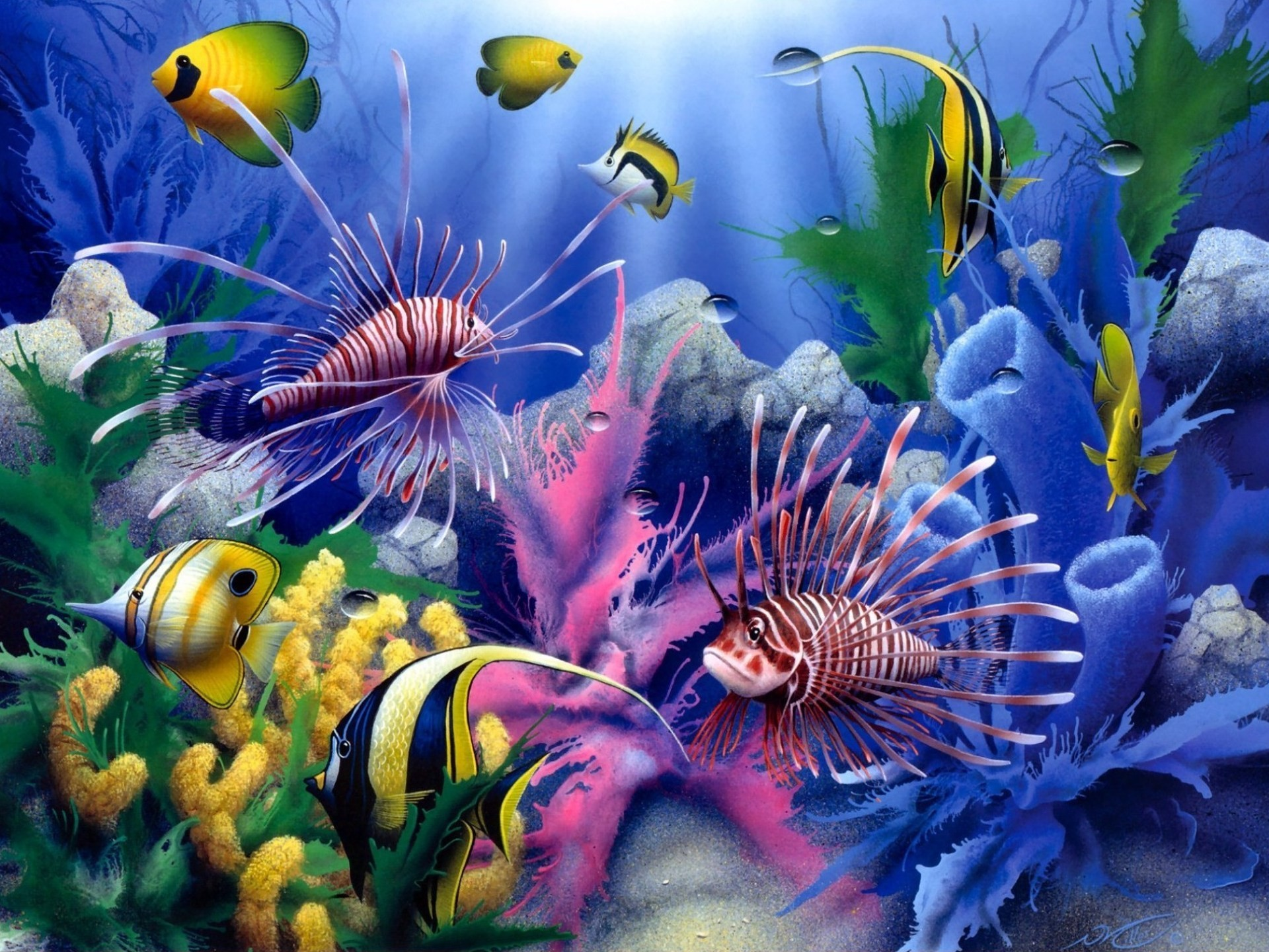 Lions of the Sea David Miller painting art animals fishes tropical sealife  life color underwater coral reef ocean sea sunlight wallpaper background