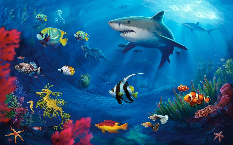 Udenrwater world HD wallpaper