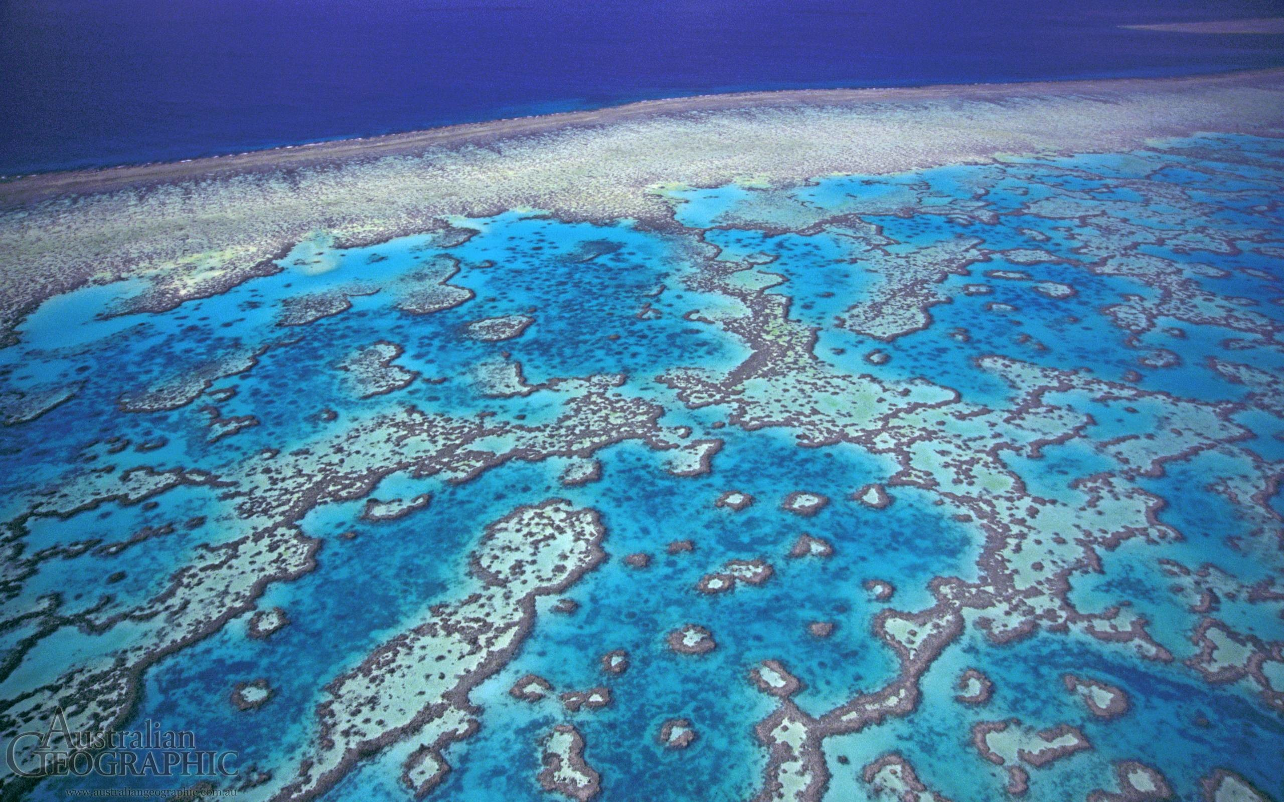 Great Barrier Reef Wallpaper 3 40902 Images HD Wallpapers .