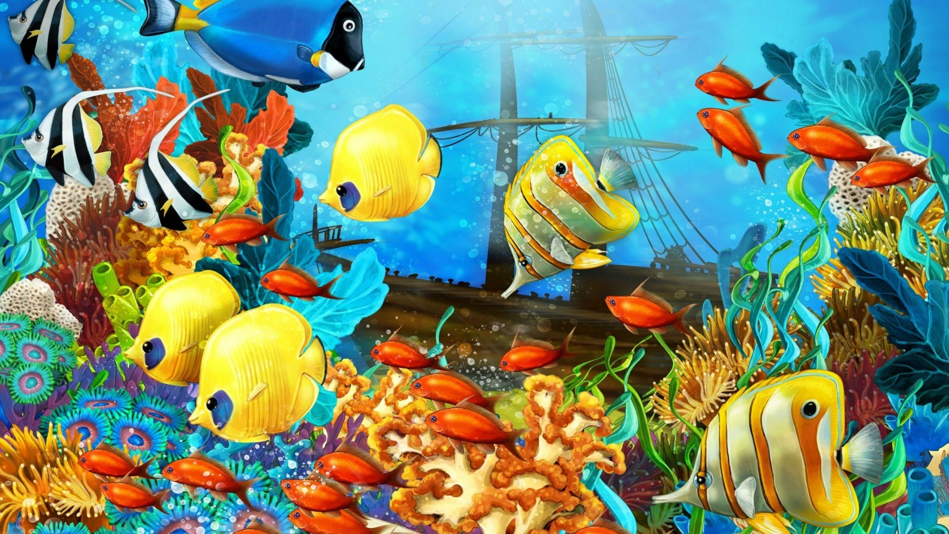 Coral Reef Marine Life HD Wallpaper