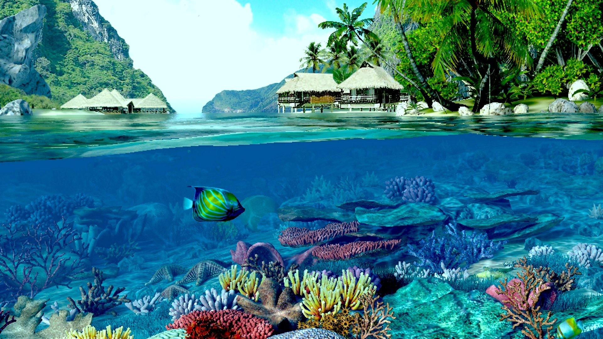 Reef Tag – Deep Reef Two Houses Ocean Coral Beach World Indigo Fish Land  Worlds Water