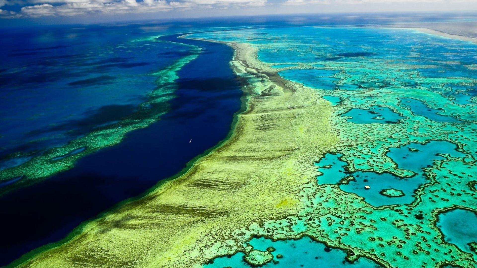 Great Barrier Reef Wallpaper.